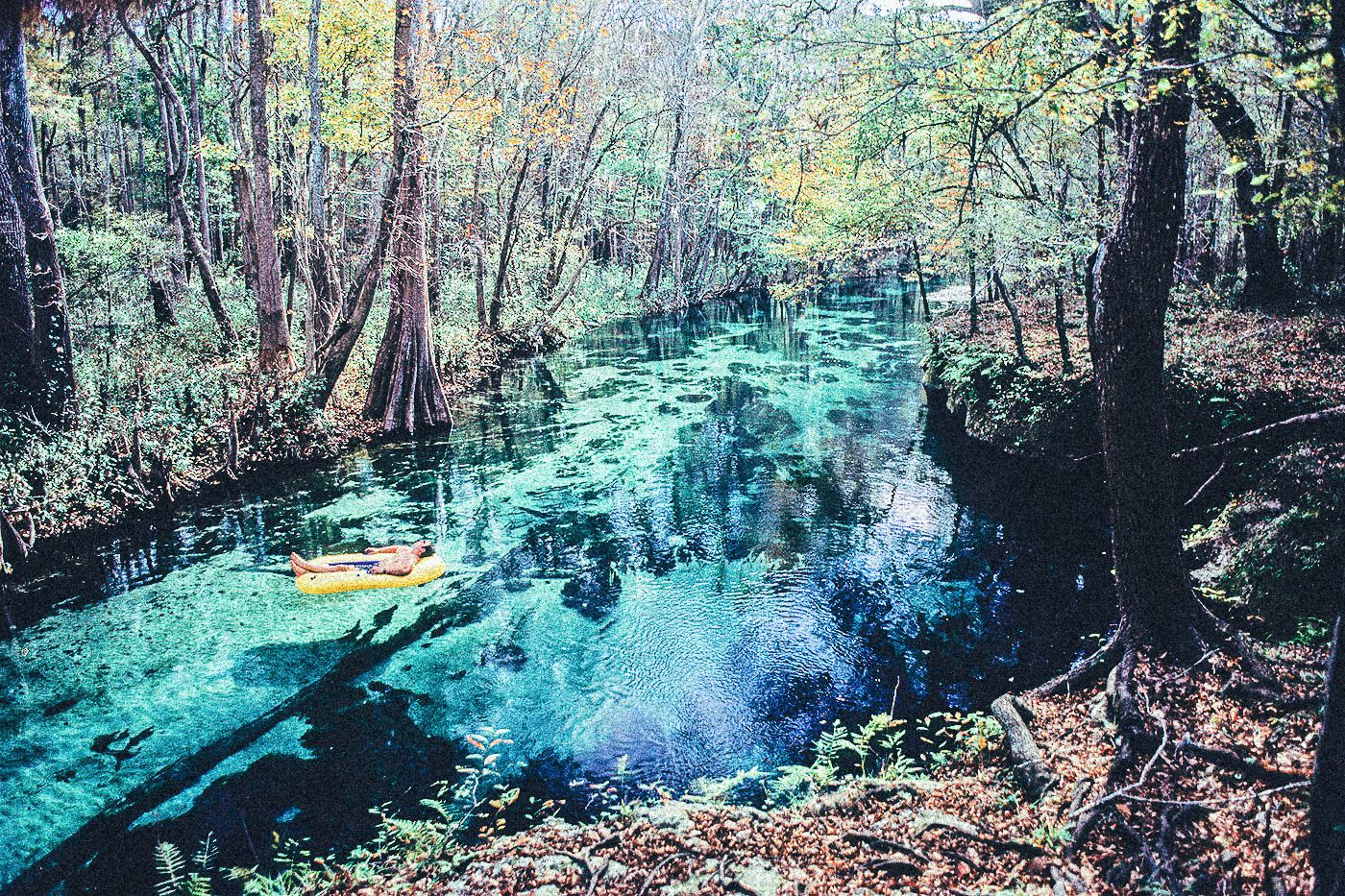 1 Thing You Have To Do In Florida! Tubing Down Ichetucknee River (5)