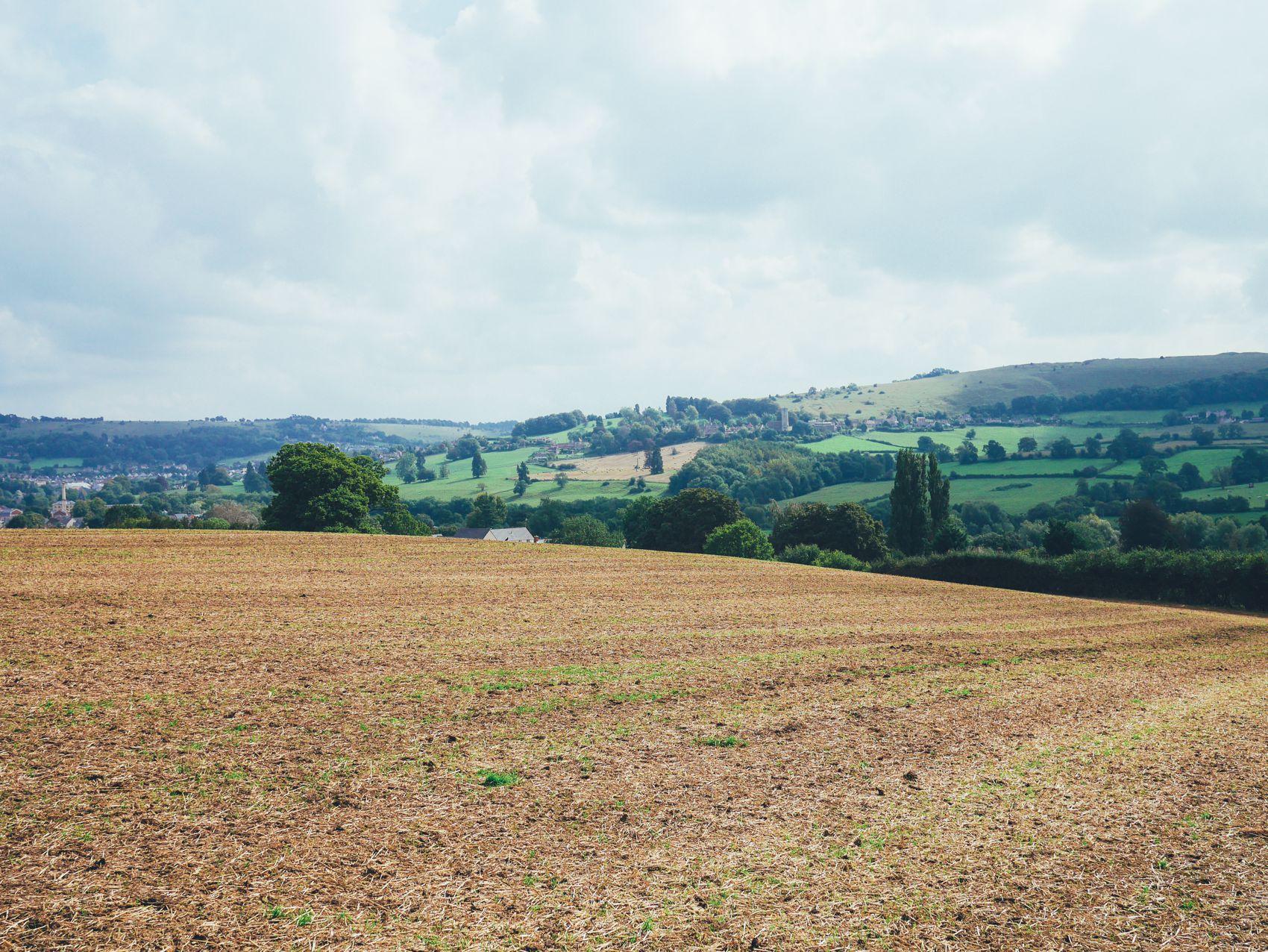 English Countryside Walking (4)