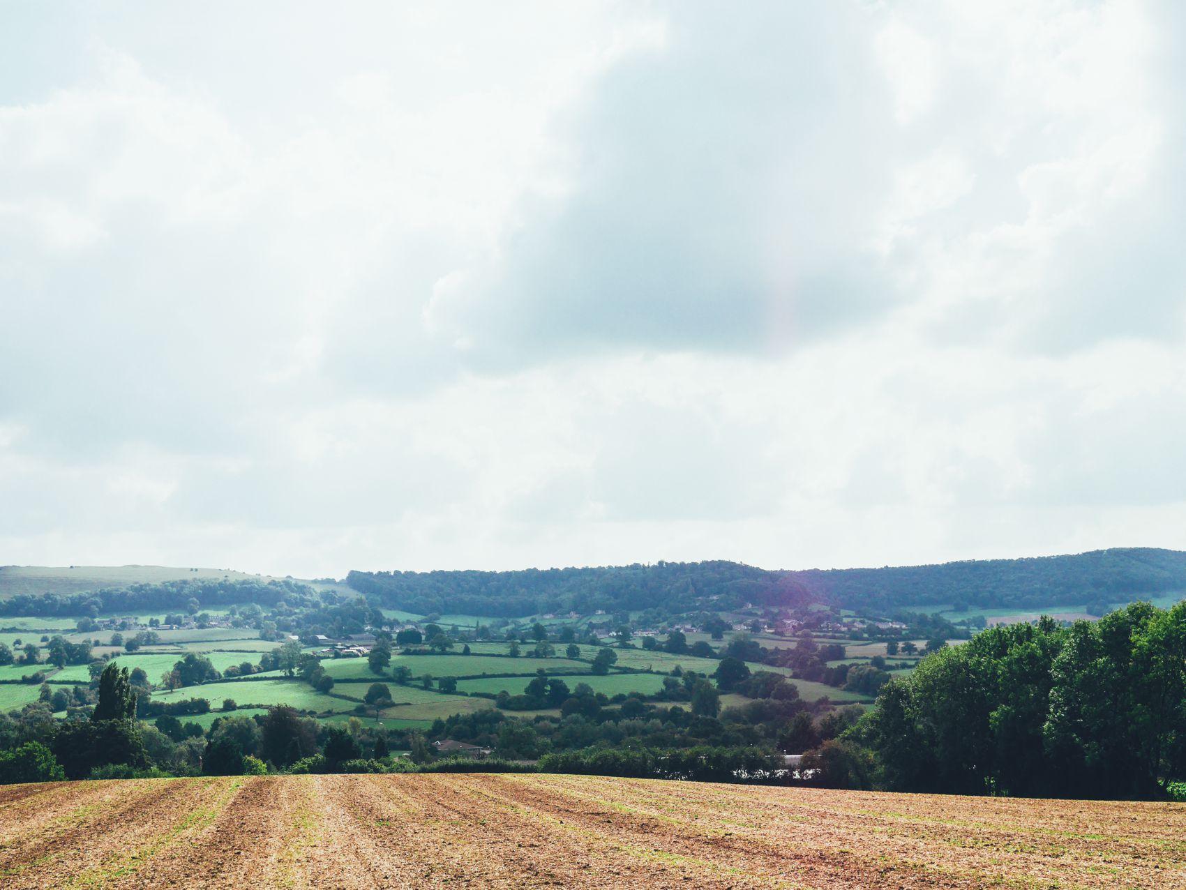 English Countryside Walking (5)