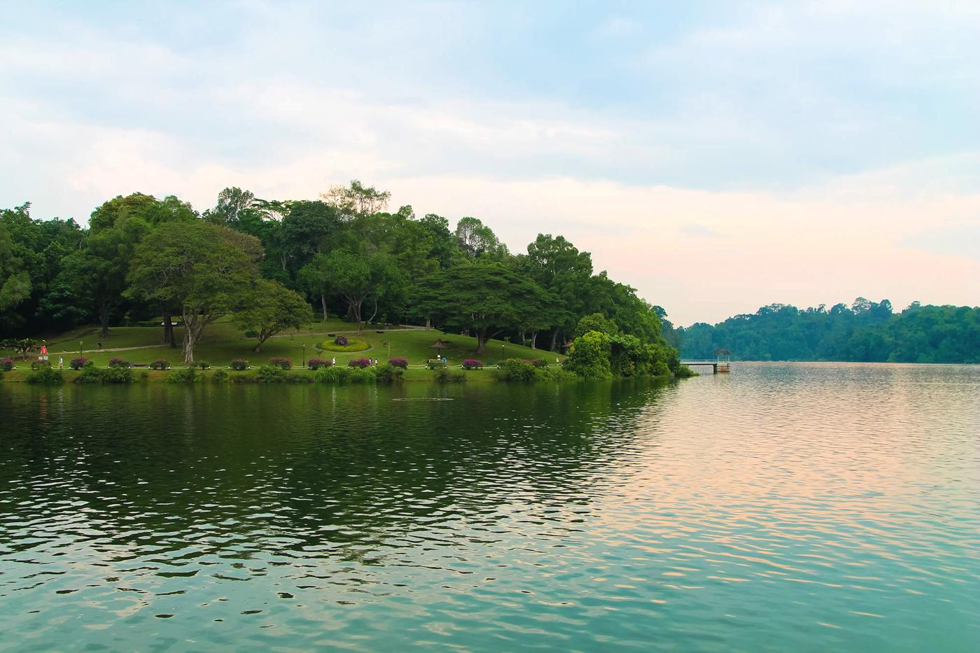 MacRitchie Nature Trail, Singapore Travel (10)