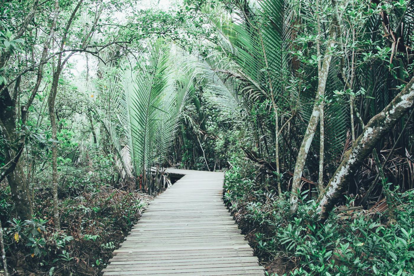 Going Off The Beaten Track in Singapore: Exploring Ubin Island... (7)
