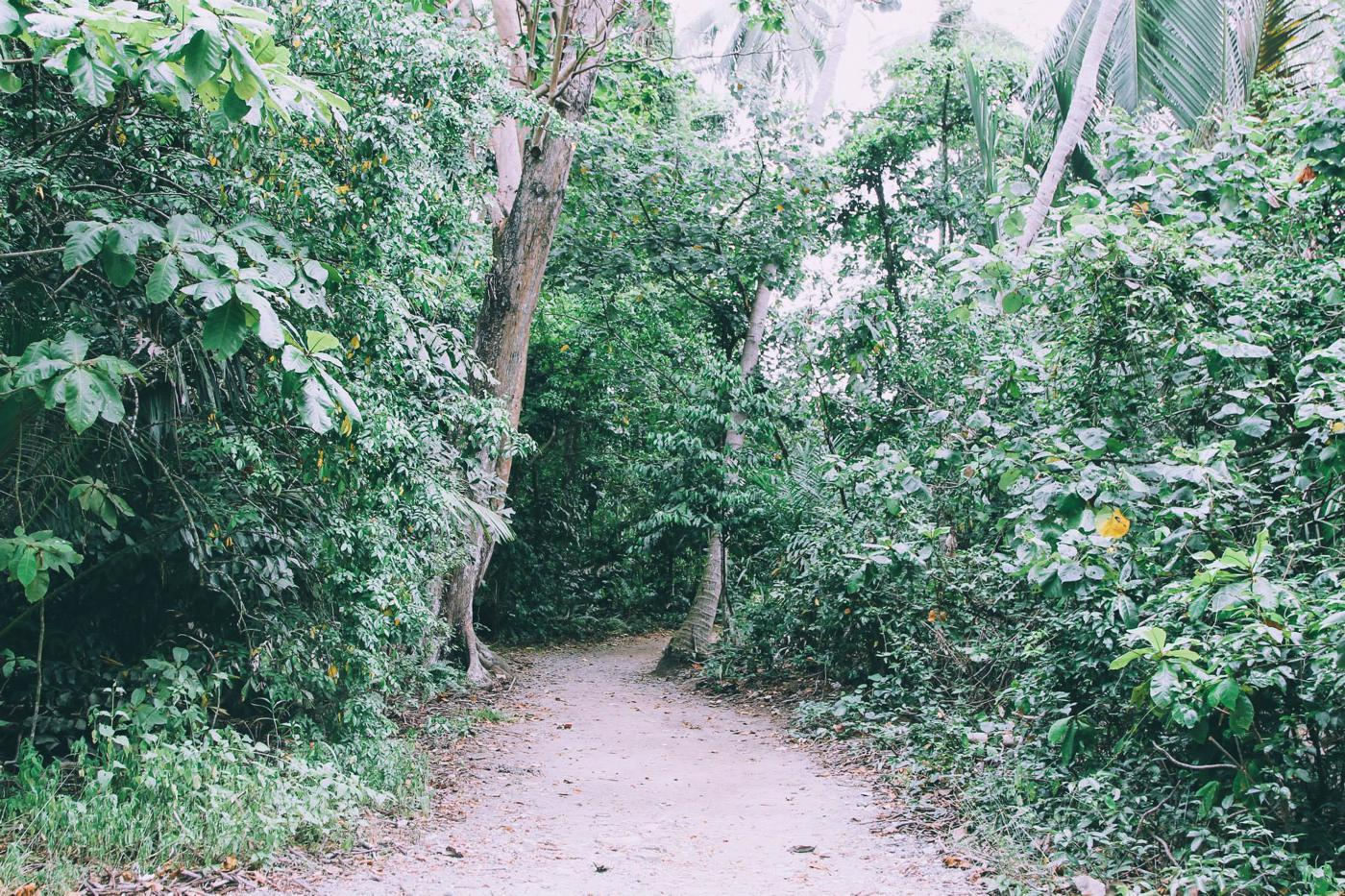 Going Off The Beaten Track in Singapore: Exploring Ubin Island... (15)