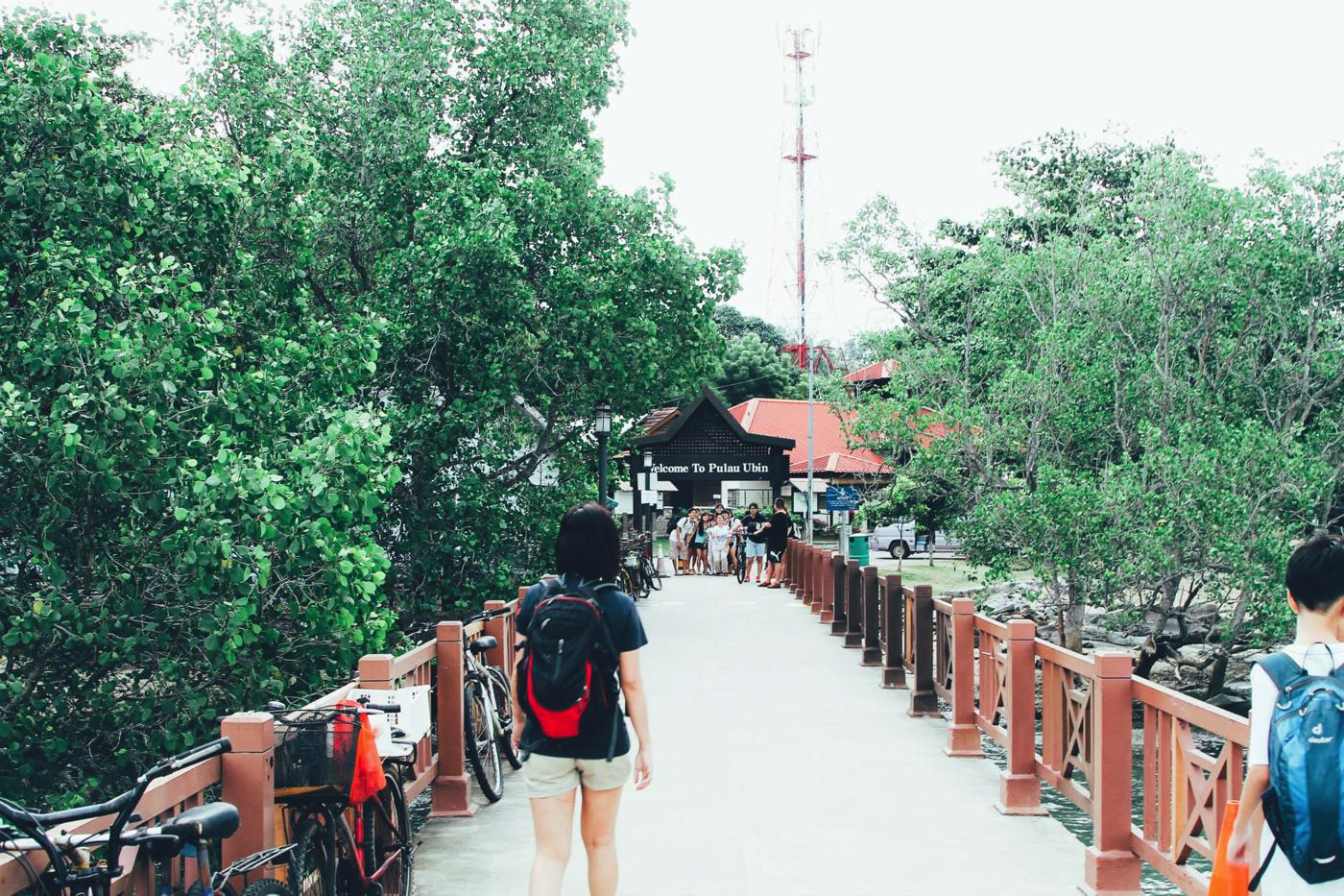 Going Off The Beaten Track in Singapore: Exploring Ubin Island... (21)