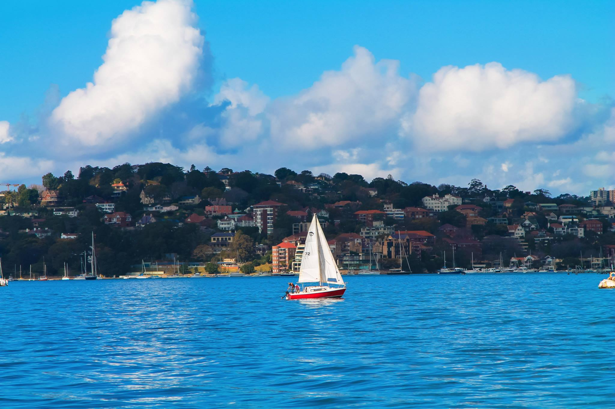 16 Experiences You NEED To Have In Sydney, Australia! (1)