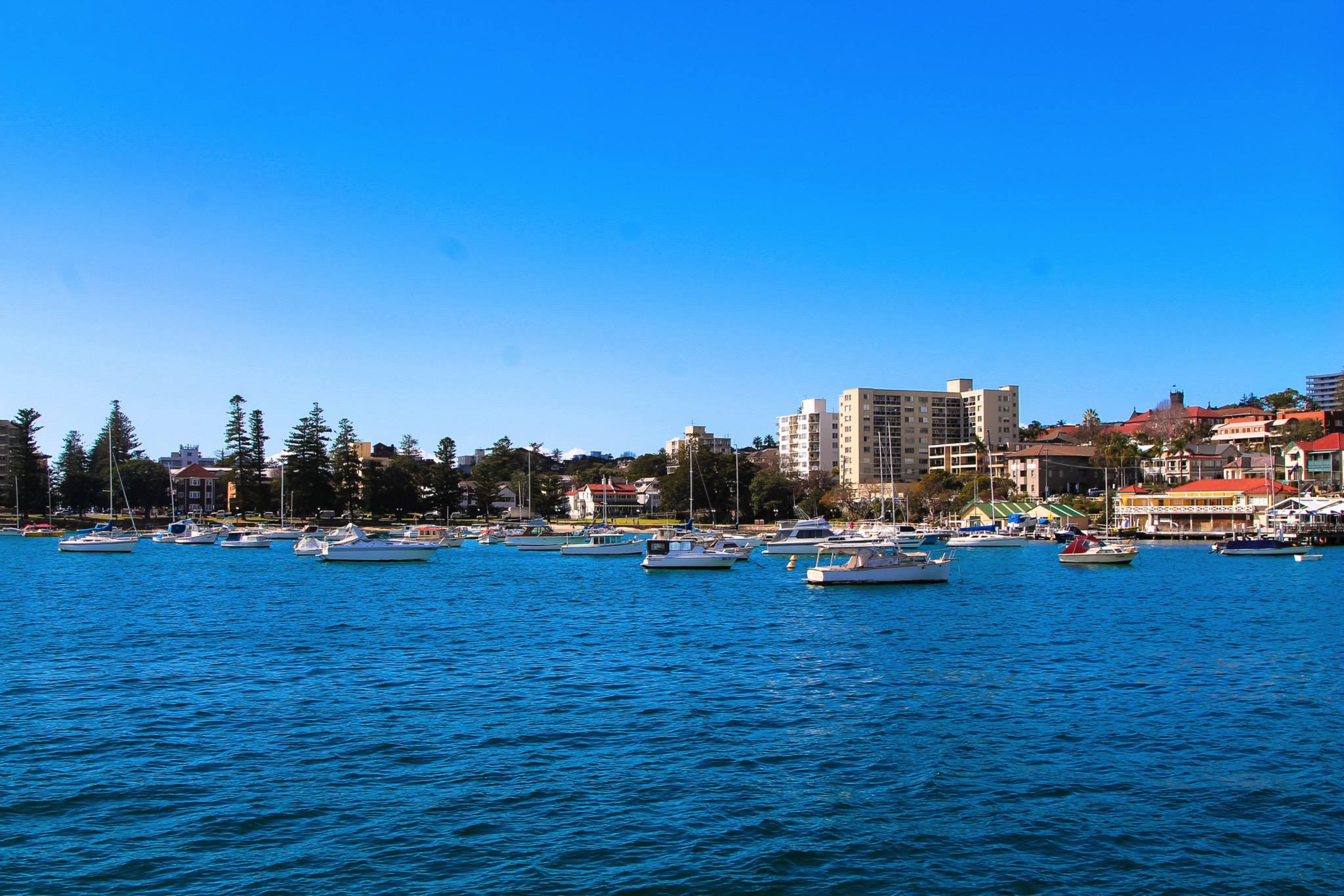 16 Experiences You NEED To Have In Sydney, Australia! (8)