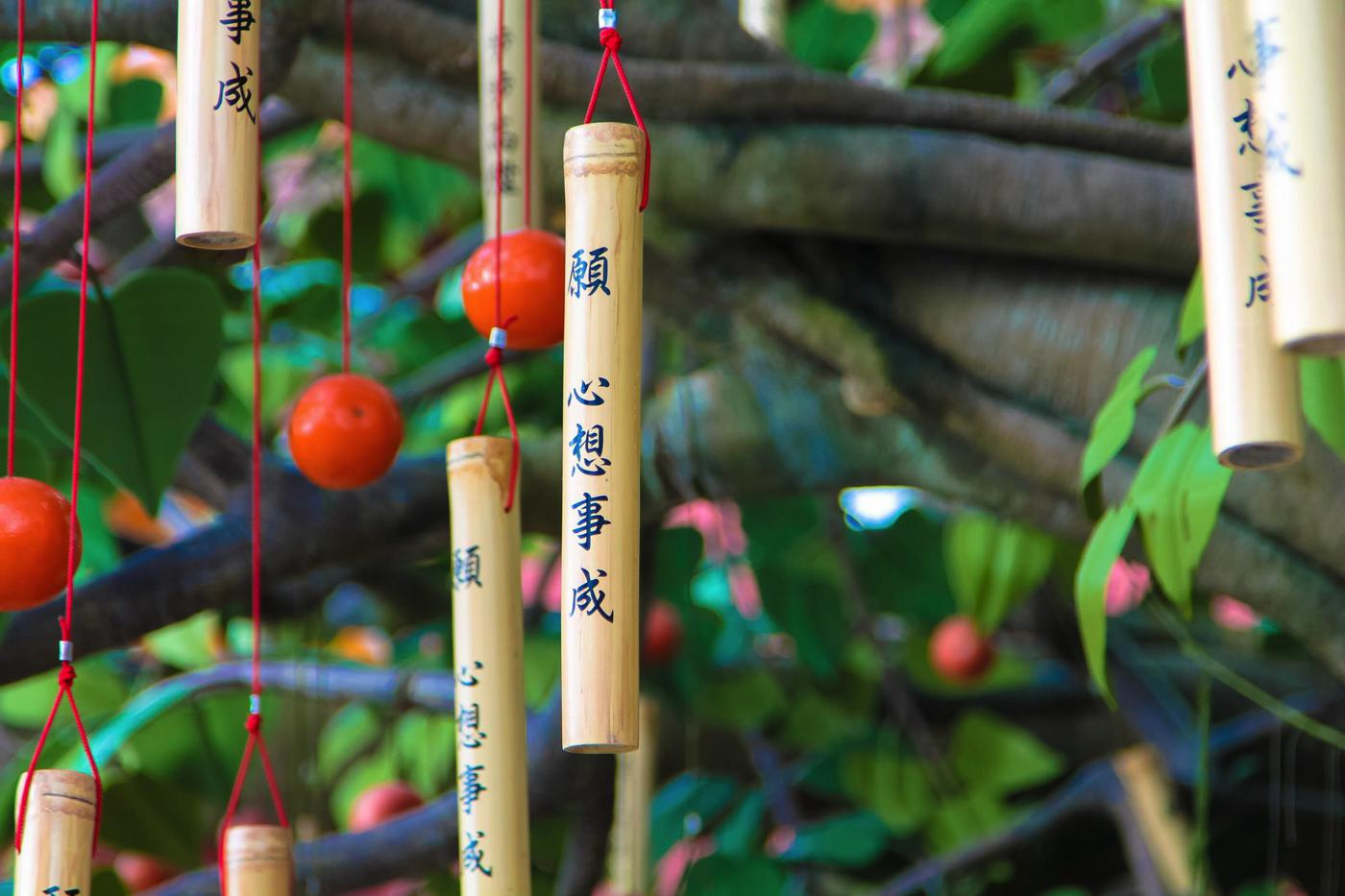 Things To Do In Lantau Island, Hong Kong (35)