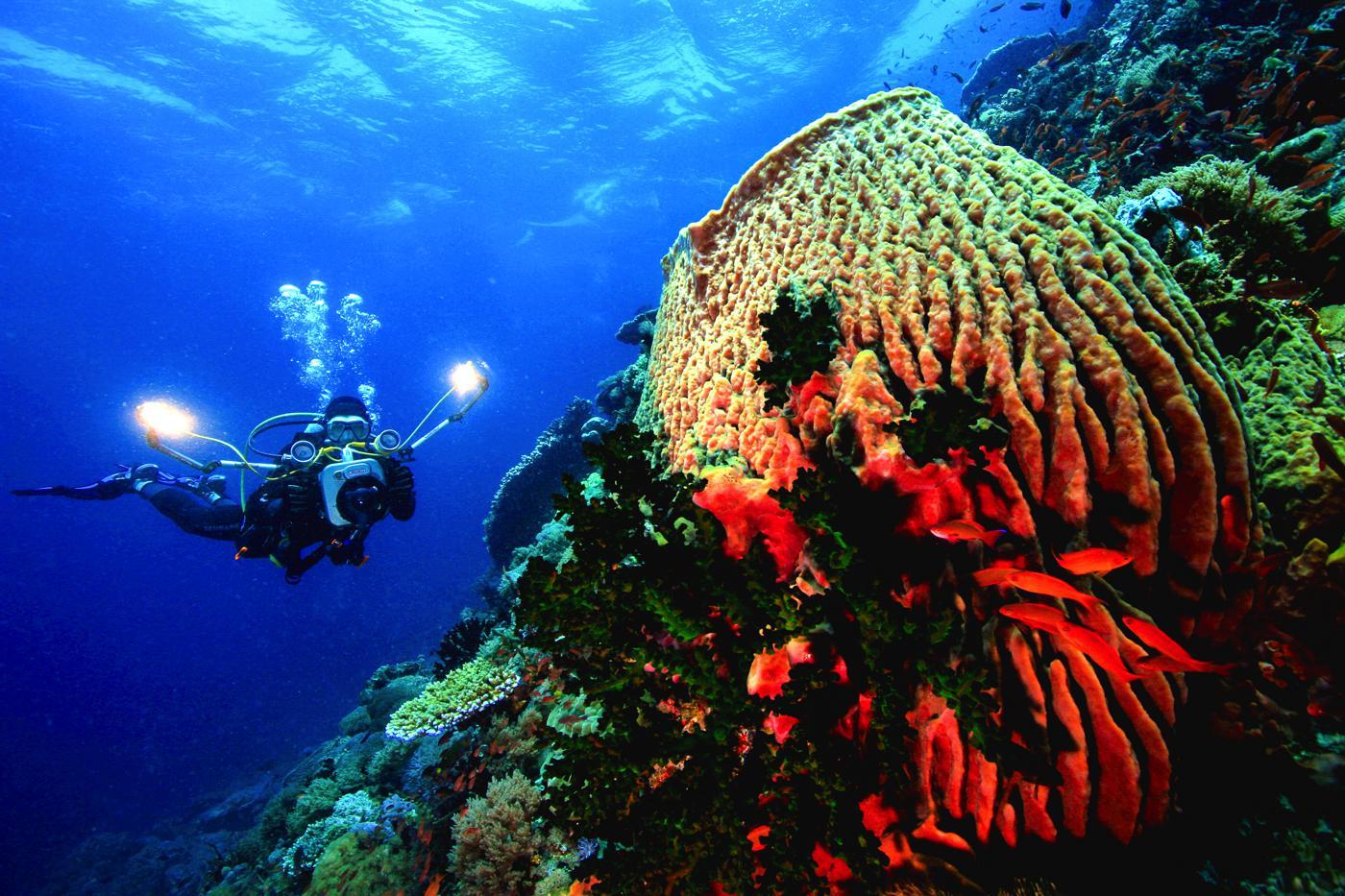 10 Reasons You Need To Visit Palawan, Philippines (8)