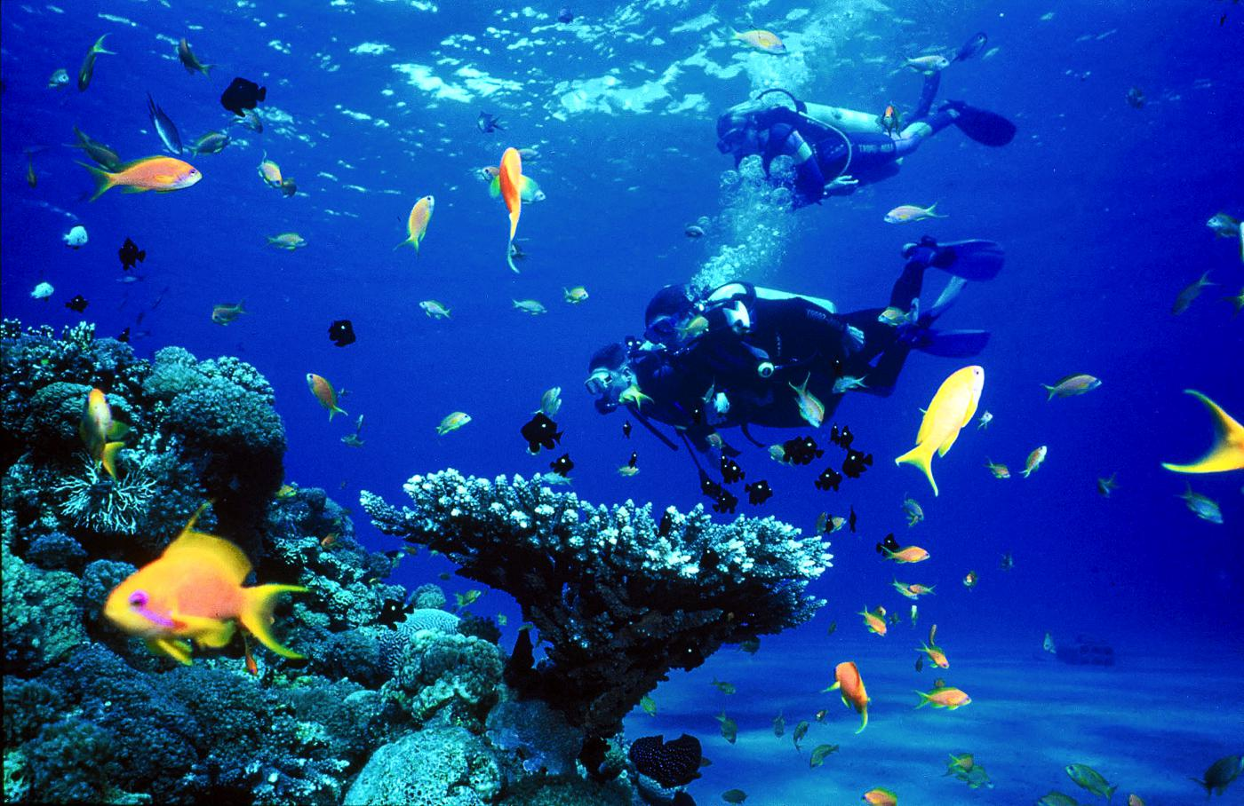 10 Reasons You Need To Visit Palawan, Philippines (7)
