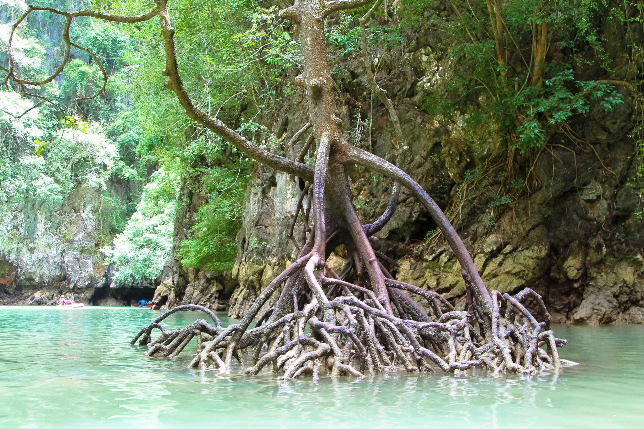 Things To Do When Sailing From Island To Island in Phang Nga Bay, Phuket, Thailand - PART 1 (30)