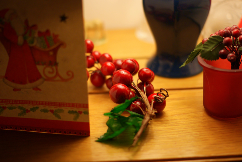 Sights, Sounds And Smells Of Christmas... (12)