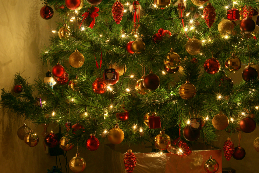 Sights, Sounds And Smells Of Christmas... (1)