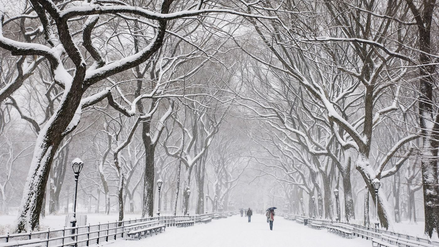 Here 39 s definitive proof that new york is truly magical for Immagini per desktop inverno