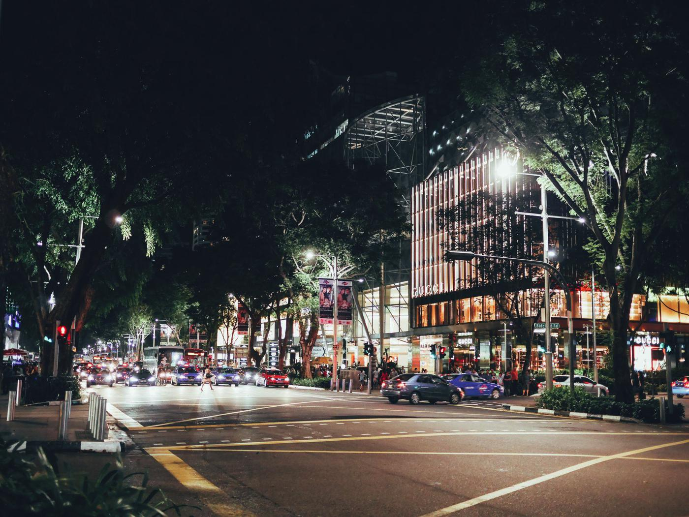 Orchard Road, Singapore Travel on Hand Luggage Only (9)