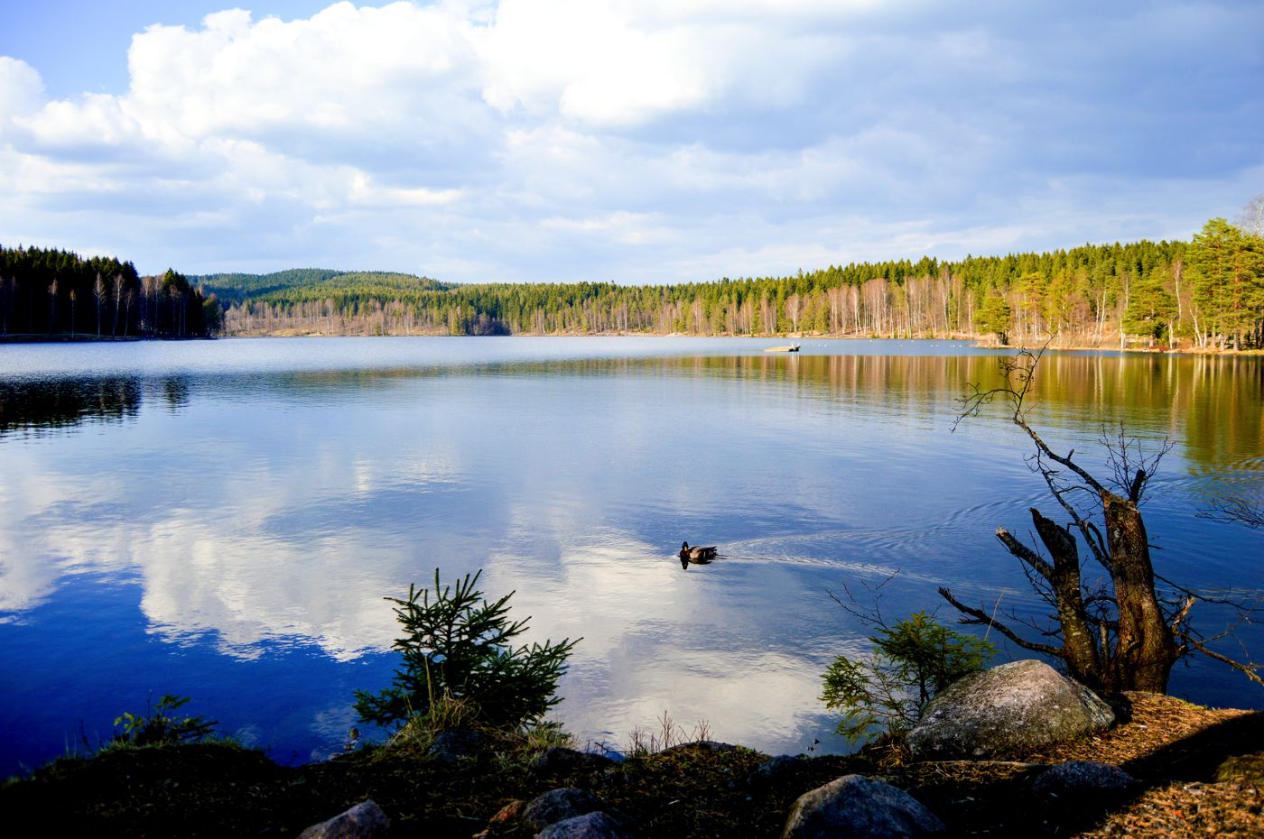 7 Amazing Places You Have To Visit In Norway! (6)