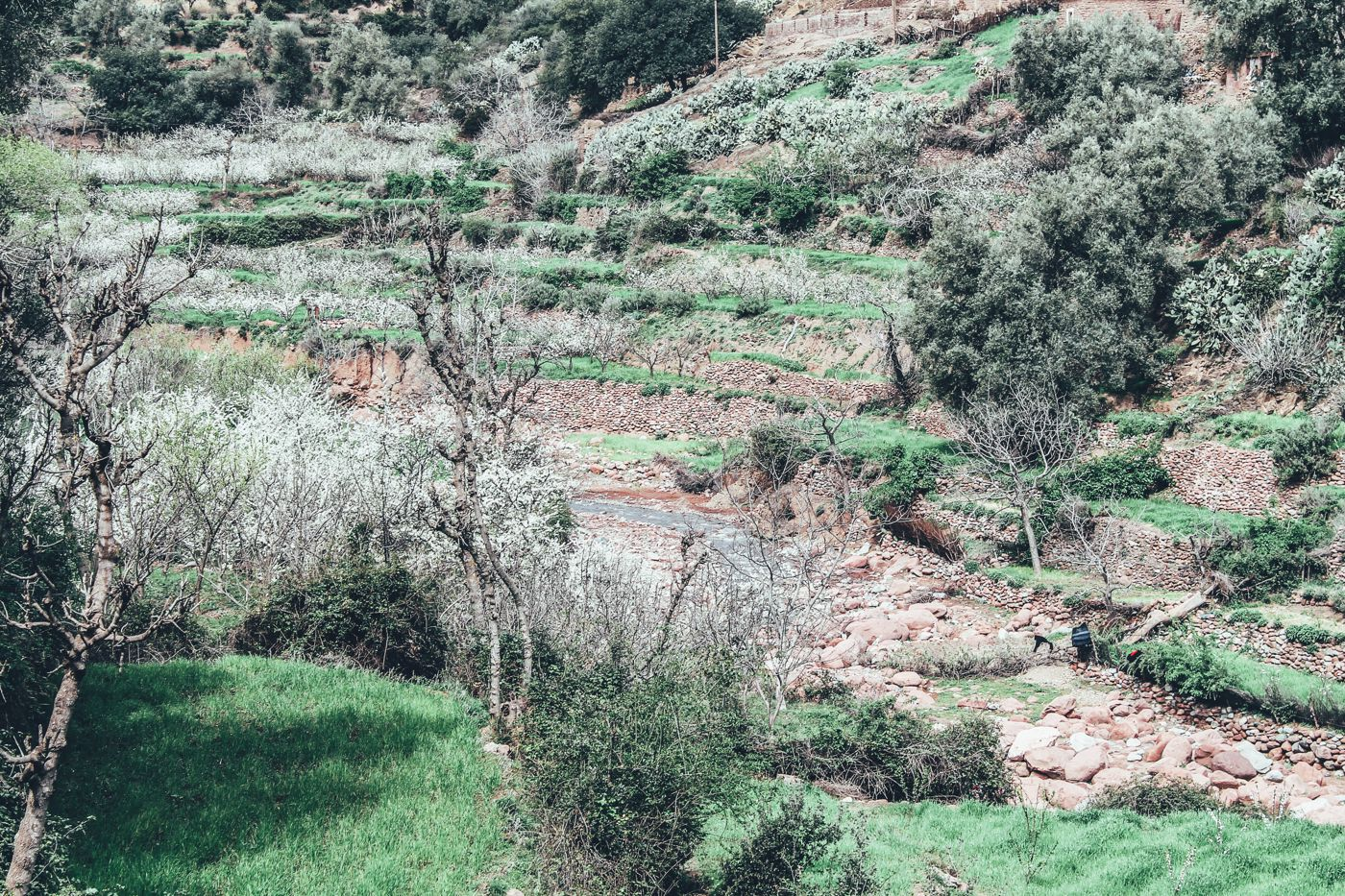 An Afternoon In A Berber Village in Morocco (3)