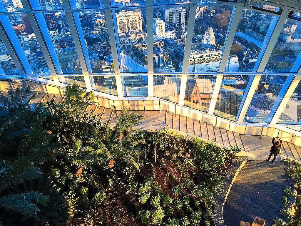 Sky Gardens, London, 20 Fenchurch Street, Rhubard, Amazing Views Of London (5)