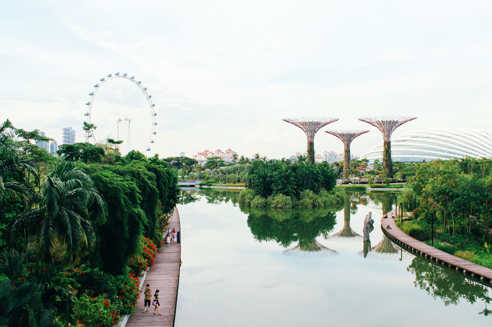Under The Dome And Into The Forest... In Singapore, Flower Dome and Cloud Forest, Gardens By The Bay (3)