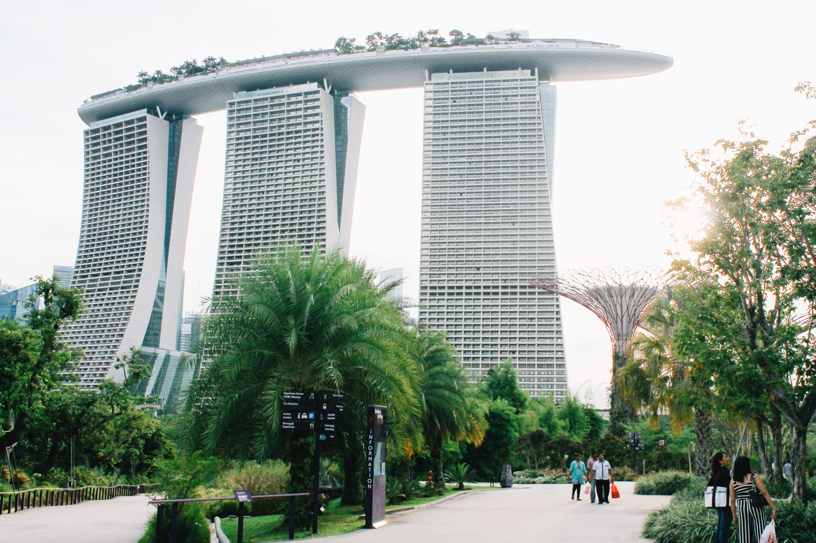 Under The Dome And Into The Forest... In Singapore, Flower Dome and Cloud Forest, Gardens By The Bay (4)
