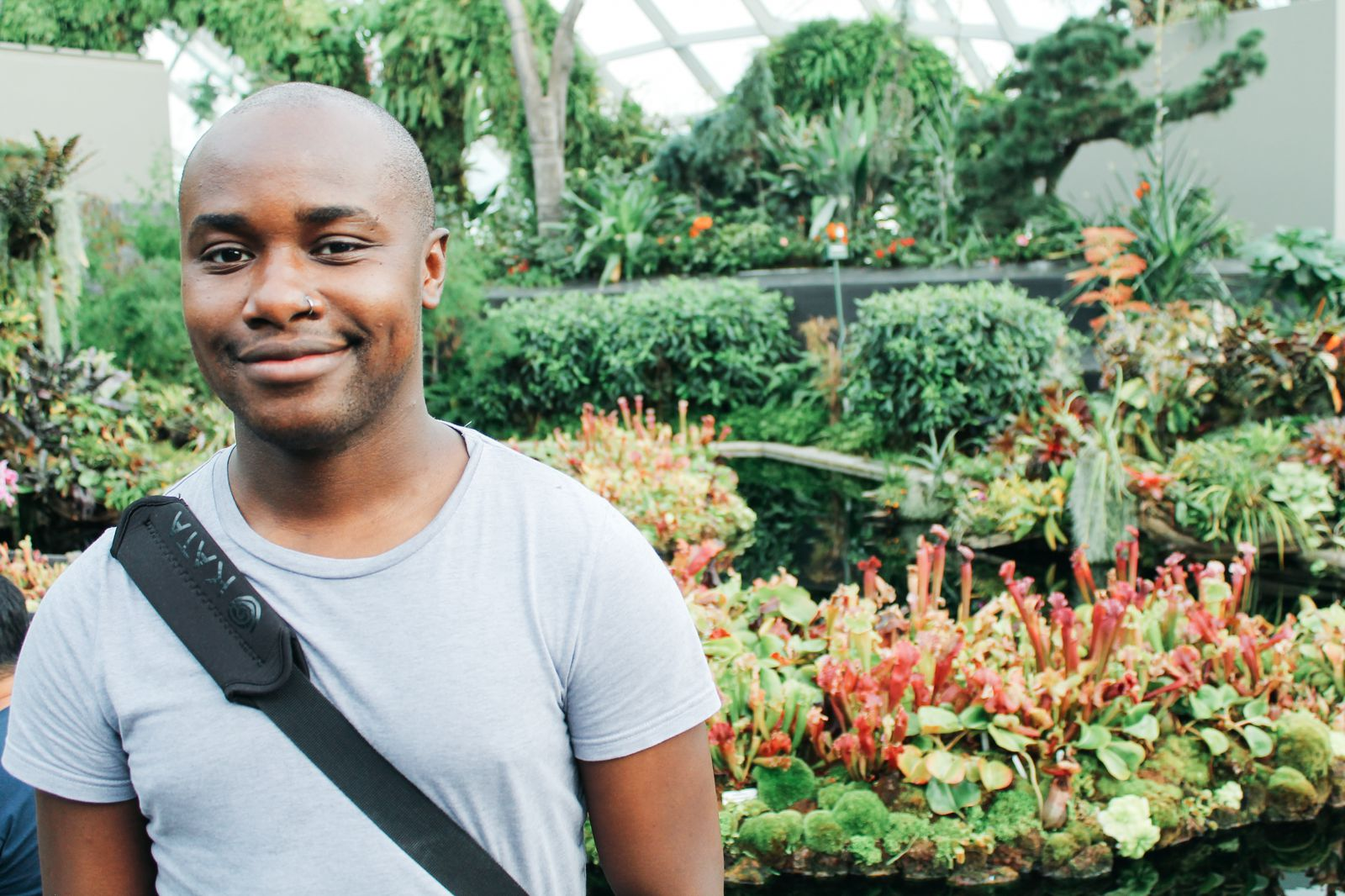 Under The Dome And Into The Forest... In Singapore, Flower Dome and Cloud Forest, Gardens By The Bay (10)
