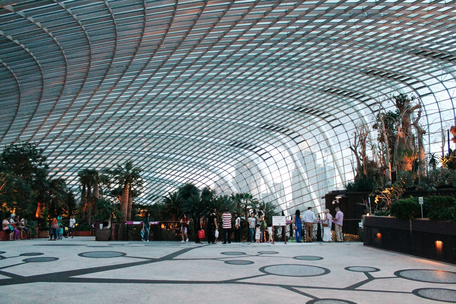 Under The Dome And Into The Forest... In Singapore, Flower Dome and Cloud Forest, Gardens By The Bay (20)