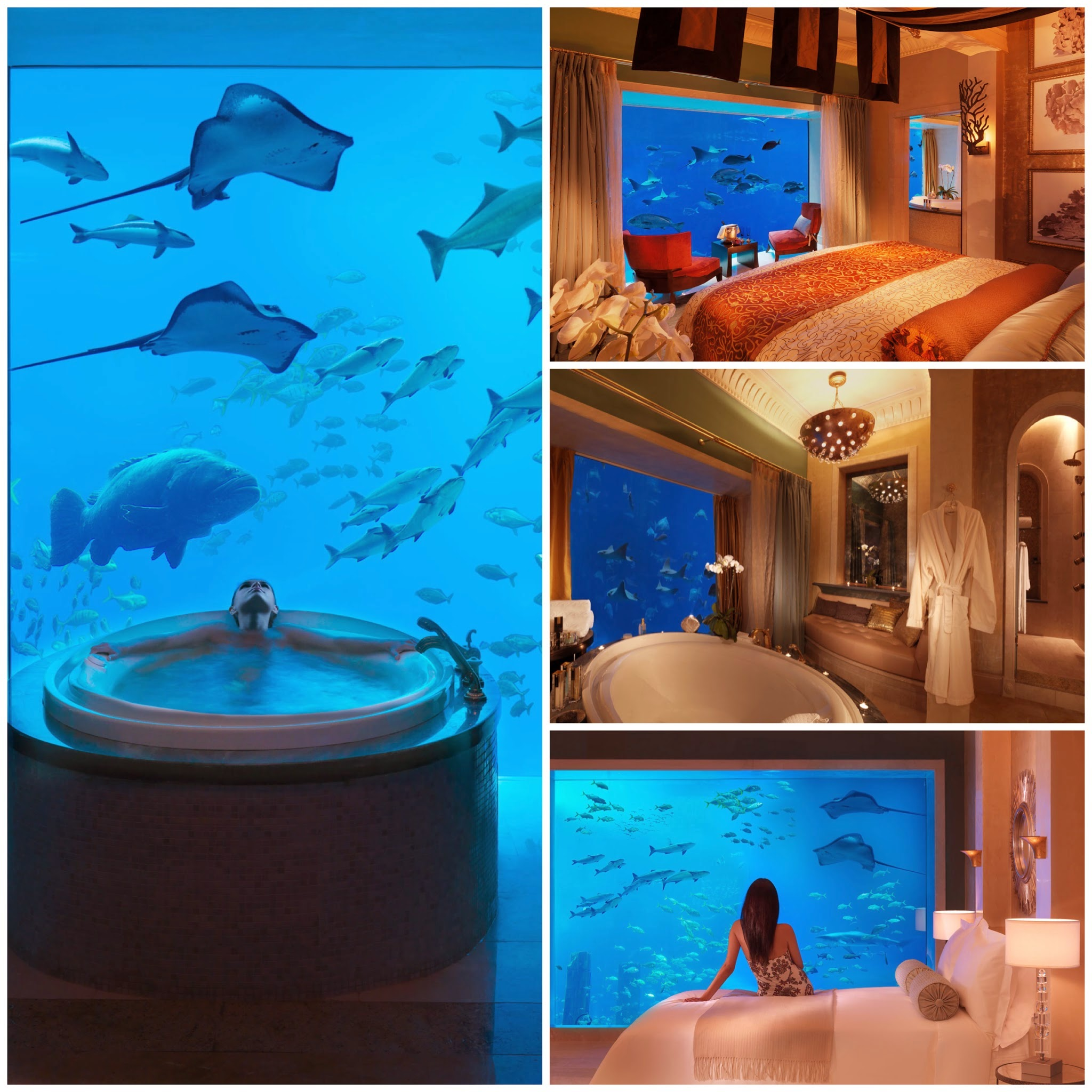 4 Amazing Underwater Hotels You Need To Stay In! (7)