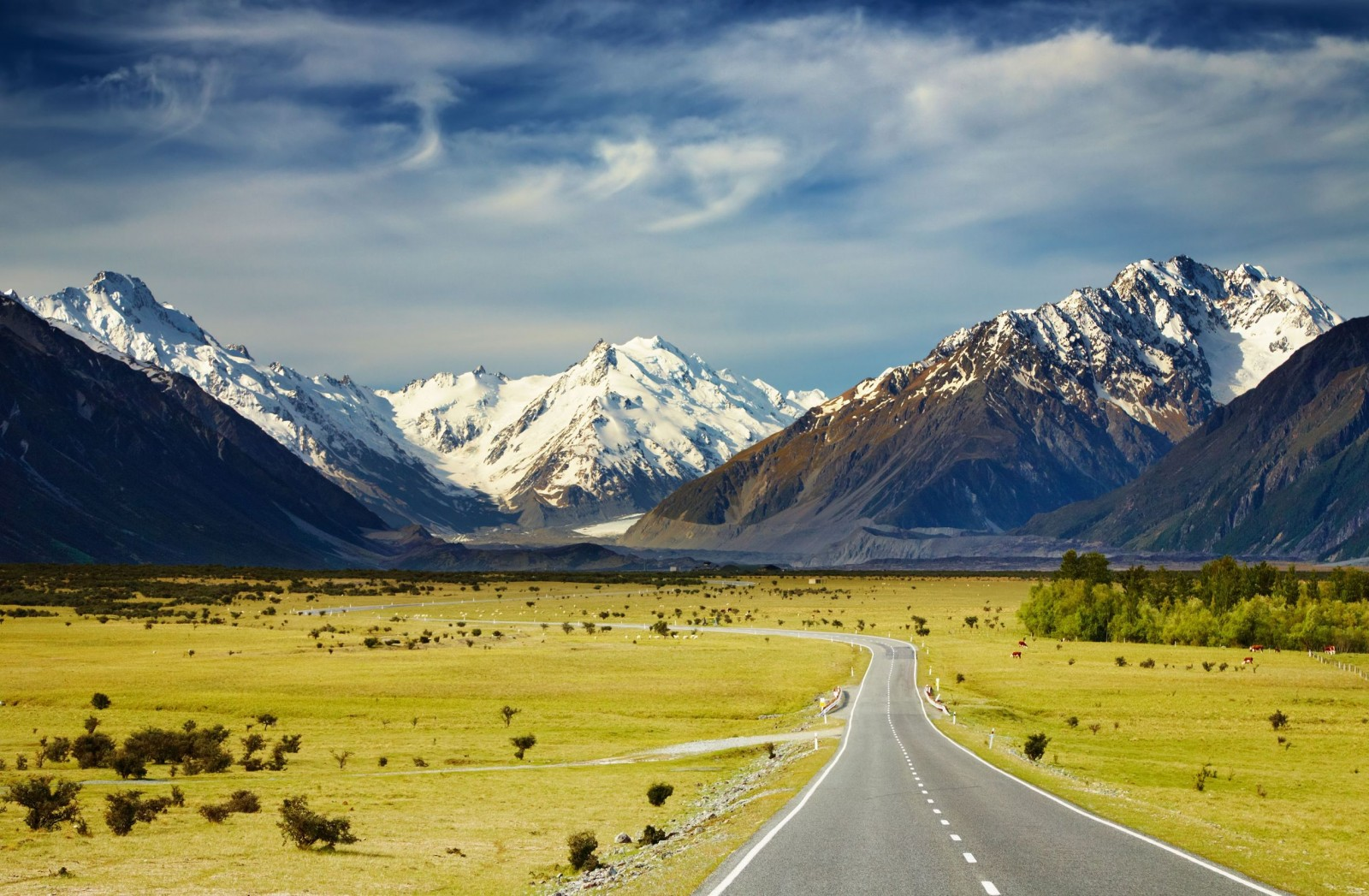 New Zealand - 5 schemes to help you move to a different country