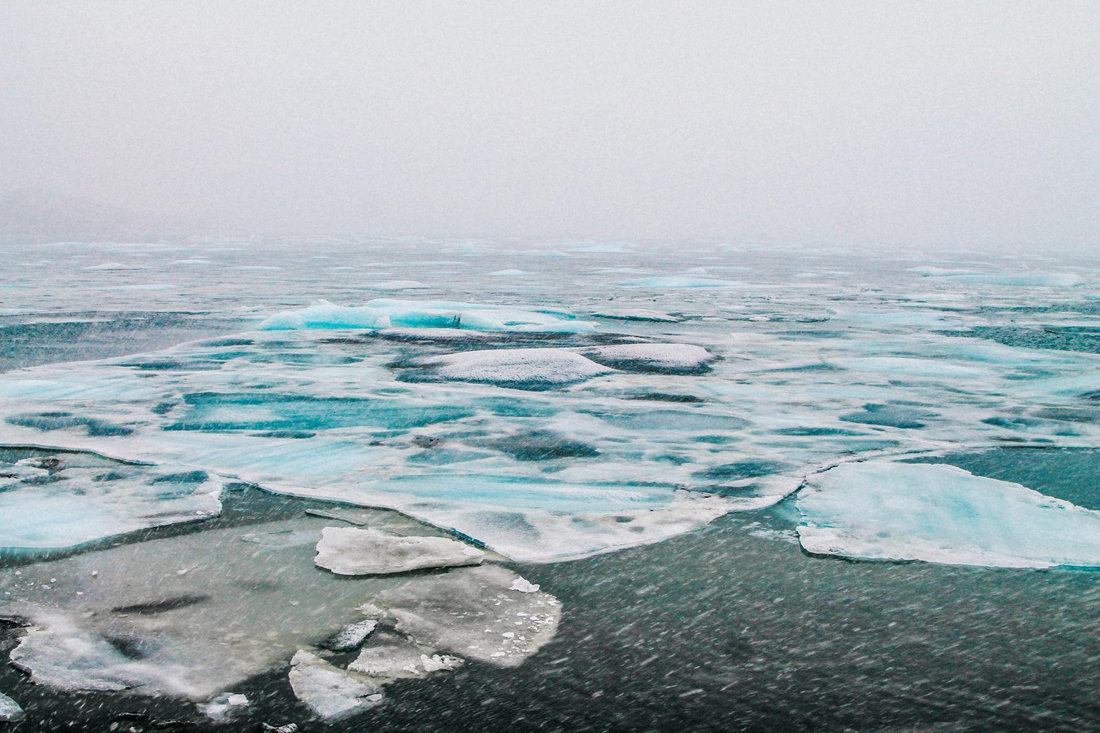 5 Course Meal at Hotel Laki and Jökulsárlón - The Iceberg Lagoon (20)