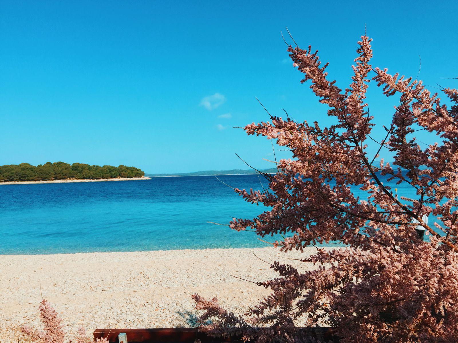 We're in Croatia!!! PLUS, A Photo Diary Of Our Trip In Croatia Thus Far... (5)