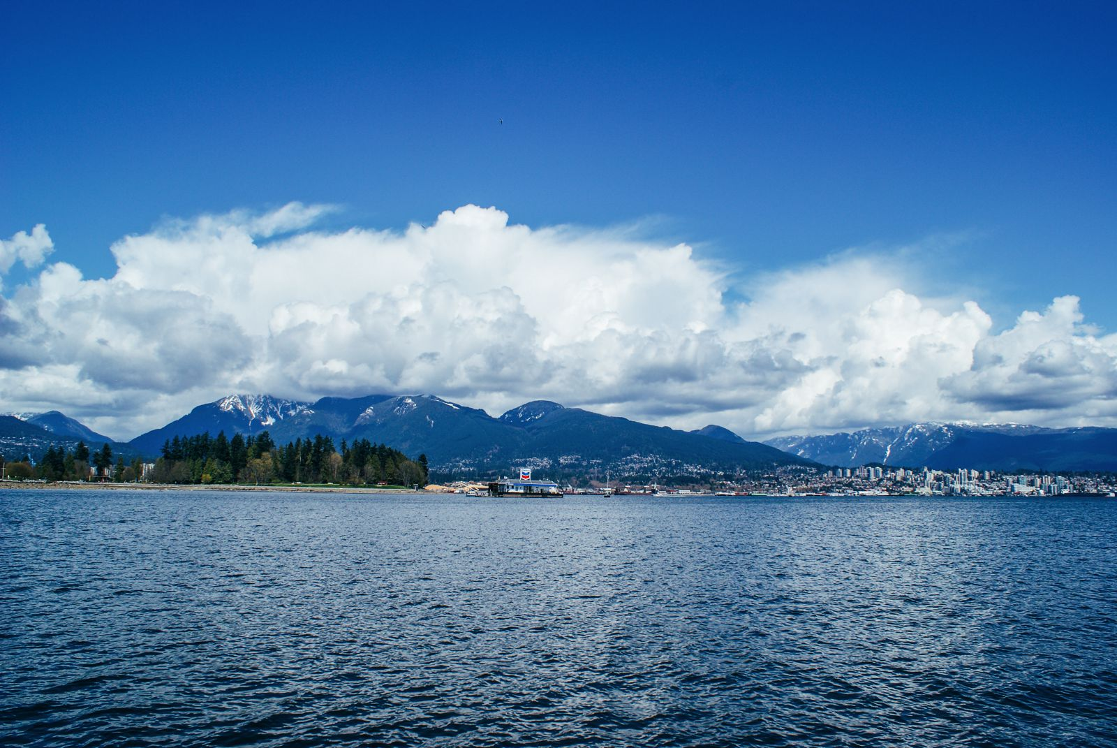 The Many Reasons Why I Fell In Love With Vancouver, Canada... (6)