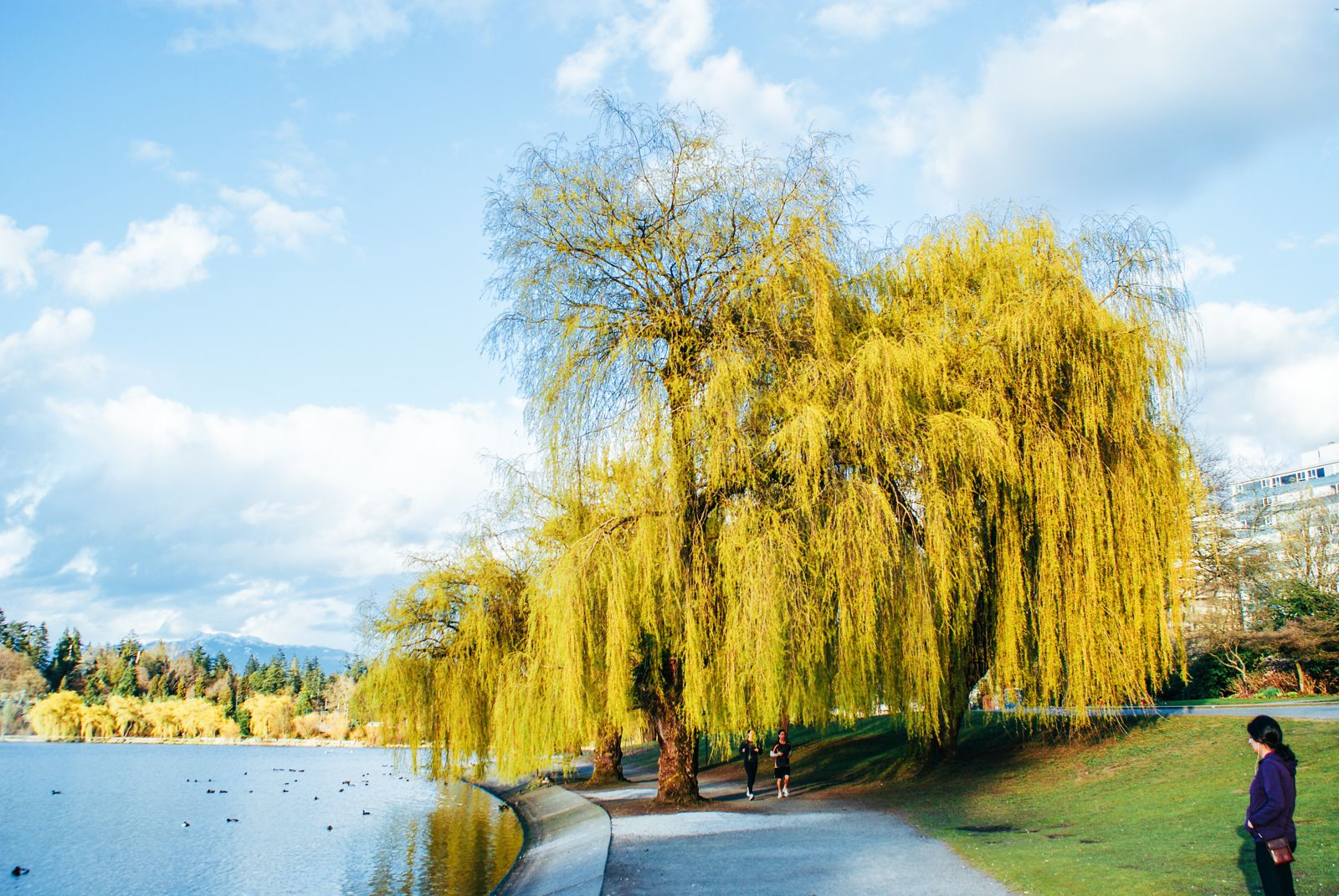 The Many Reasons Why I Fell In Love With Vancouver, Canada... (22)