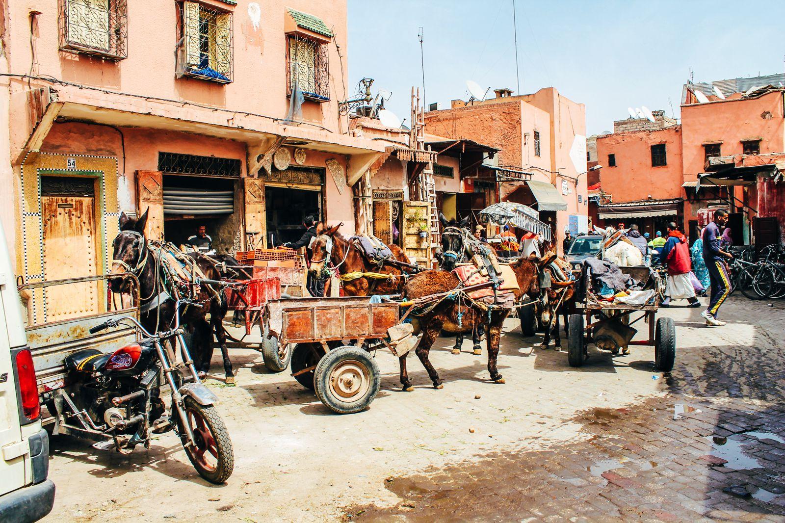 Bahia Palace... Marrakesh, Morocco. A Photo Diary. (12)
