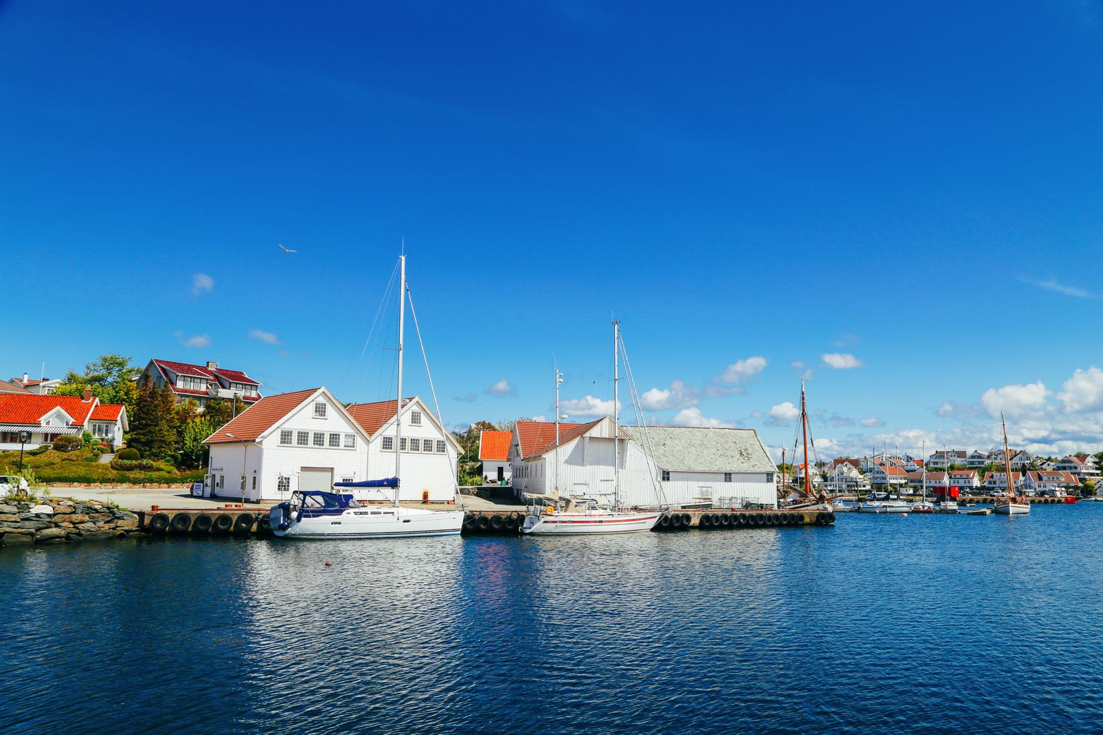 #Nordics48h Challenge - Our First Mission! Stavanger, Cod Fishing, Fishing, Tananger, Norway (21)