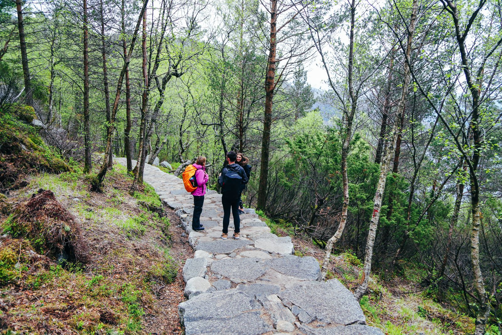 How To See The Lysefjord AND Get To The Very Edge Of Pulpit Rock In Norway! (18)