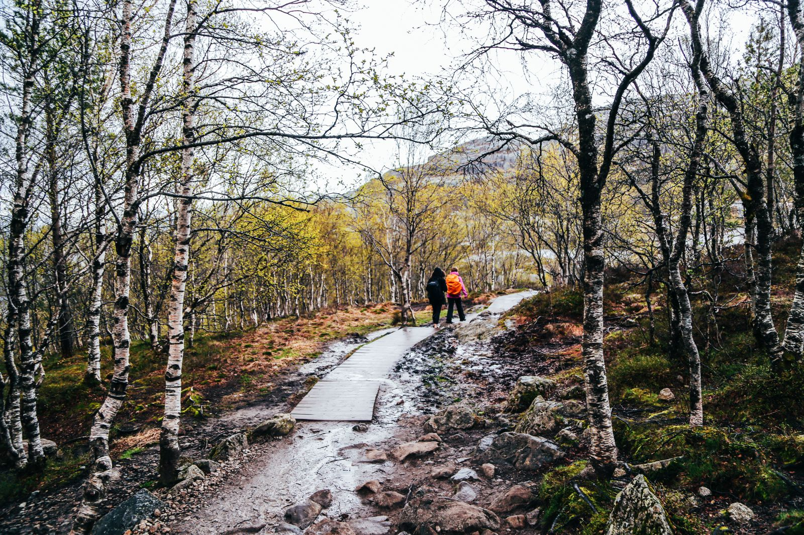 How To See The Lysefjord AND Get To The Very Edge Of Pulpit Rock In Norway! (28)