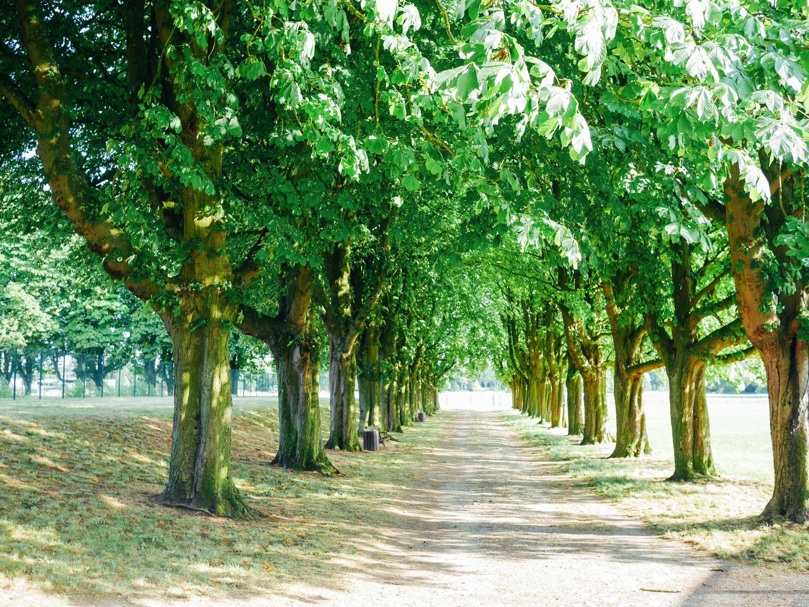Chantilly, France. A Photo Diary... (8)
