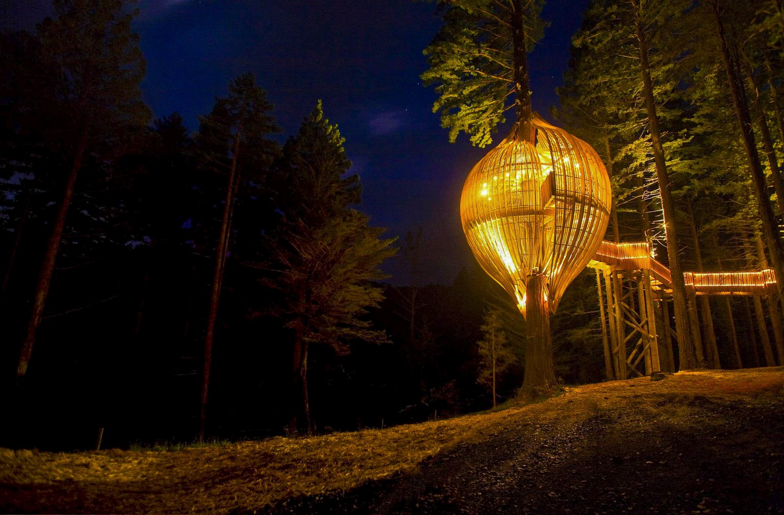 10 Gloriously Quirky Tree Houses To Visit This Year! (9)