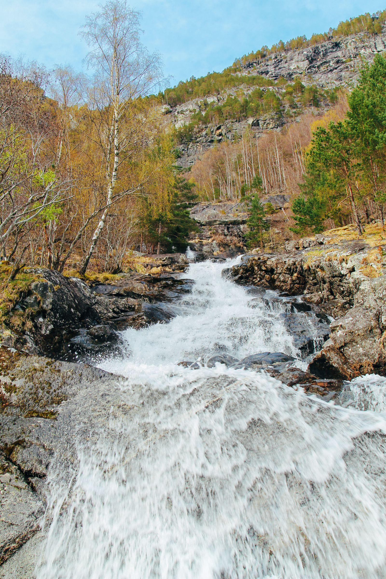 Fjord Safari... in Flam, Norway (35)