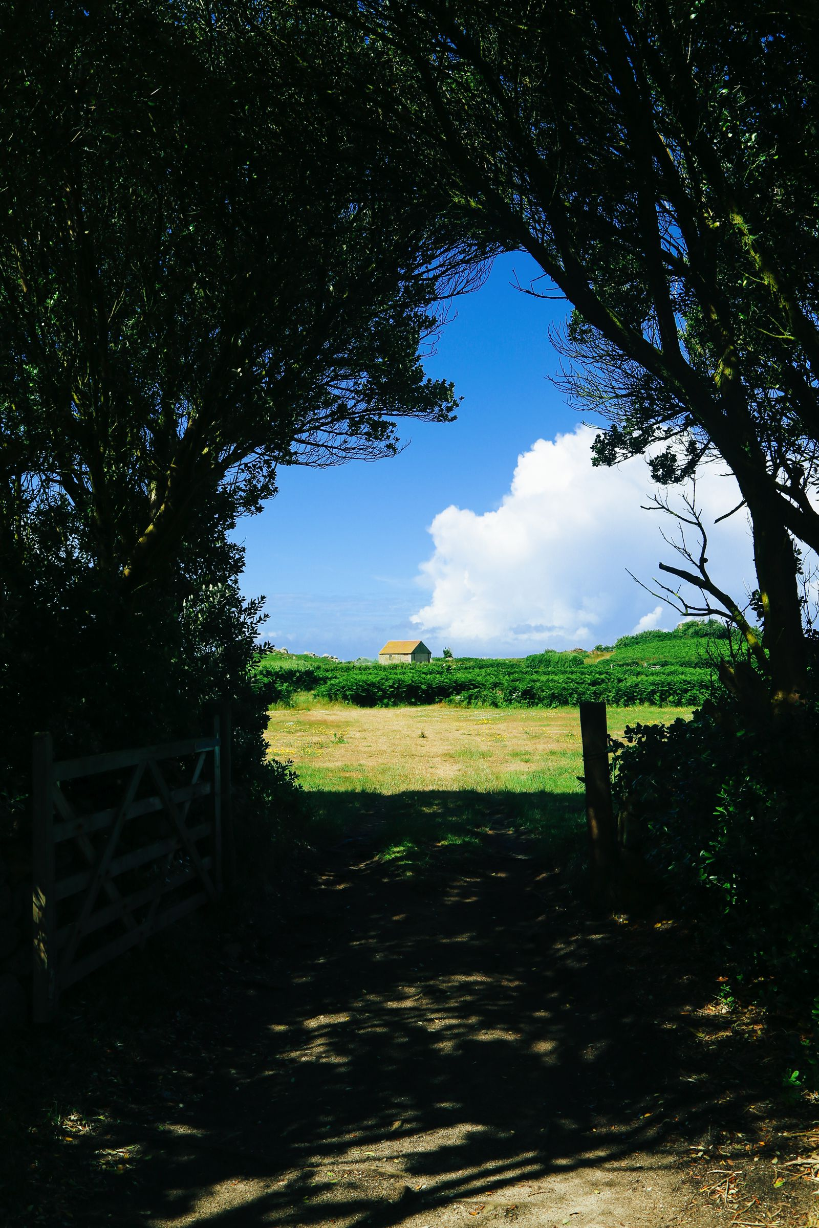 Kayaking in Bryher, Honesty Boxes and Tropical Island Hues... In Bryher Island, Isles of Scilly, UK (14)