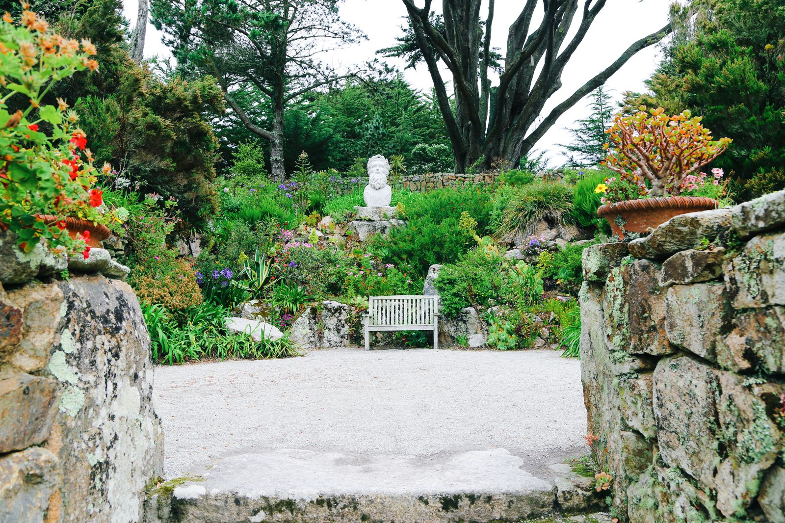 A Day On Tresco Island! Tresco Abbey Gardens (34)