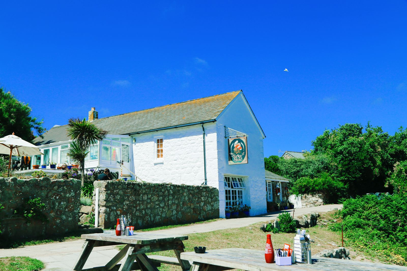 Birds Of A Feather And The Clear Blues Of St Agnes Island, Isles of Scilly (38)