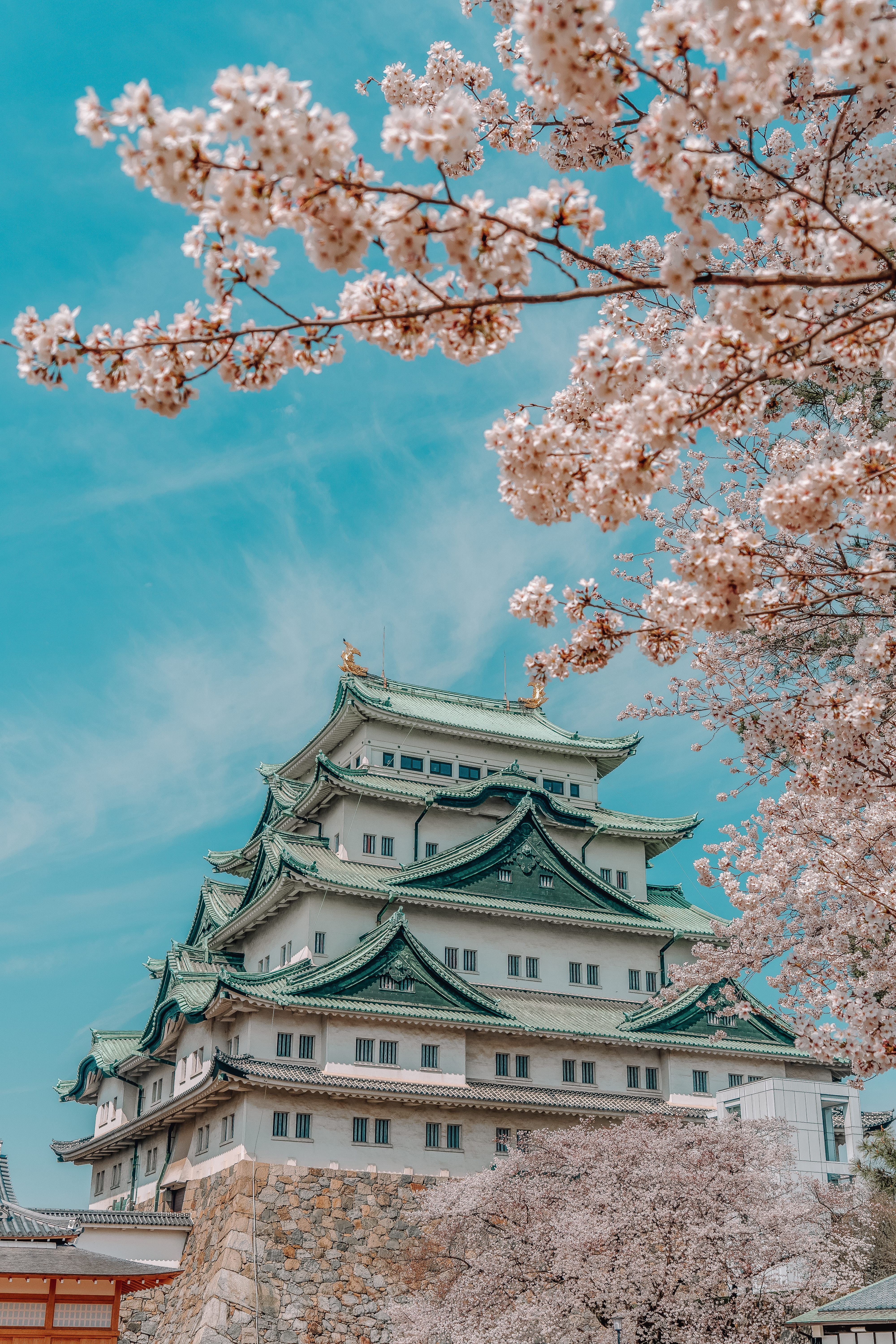 9 Best Cities In Japan You Must Visit (7)