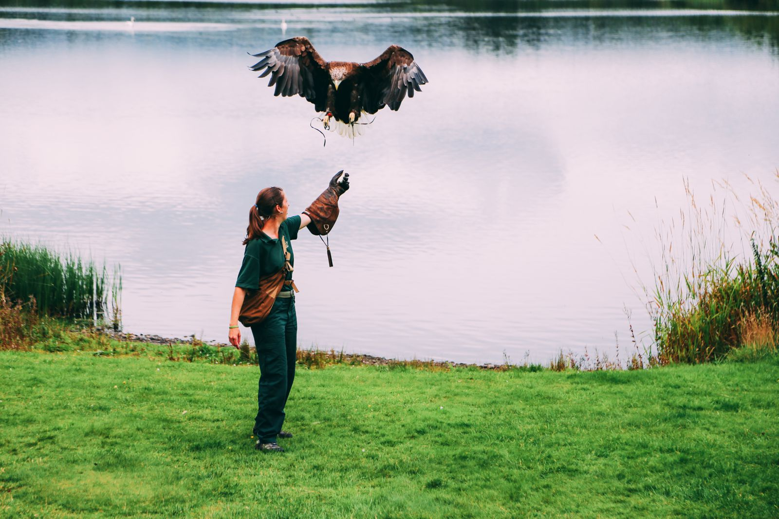 Safari In Scotland - The Photo Diary at Blair Drummond Safari and Adventure Park (30)