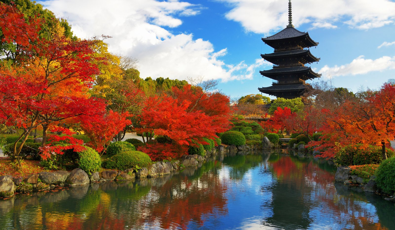 9 Cities You Have to Visit in Japan (8)