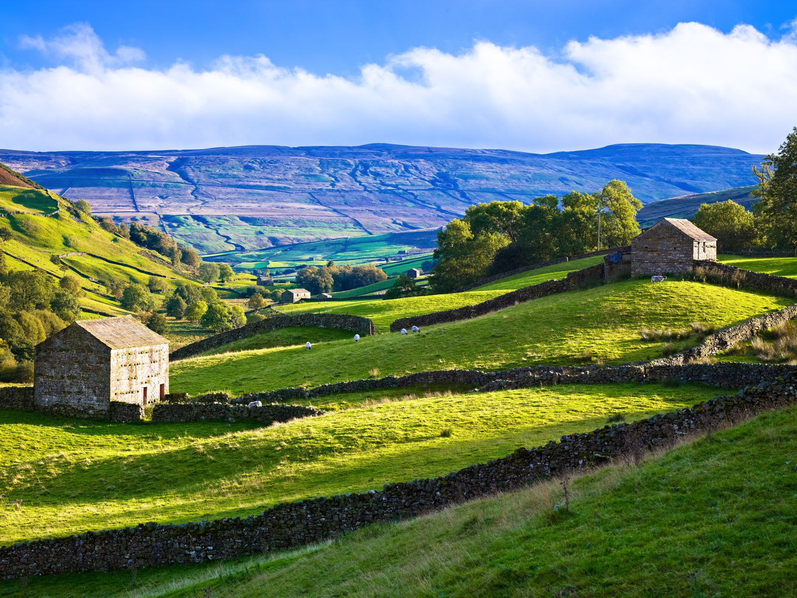 The Rolling Hills Of Yorkshire... 11 Photos That Will Make You Want To Visit Yorkshire! (6)