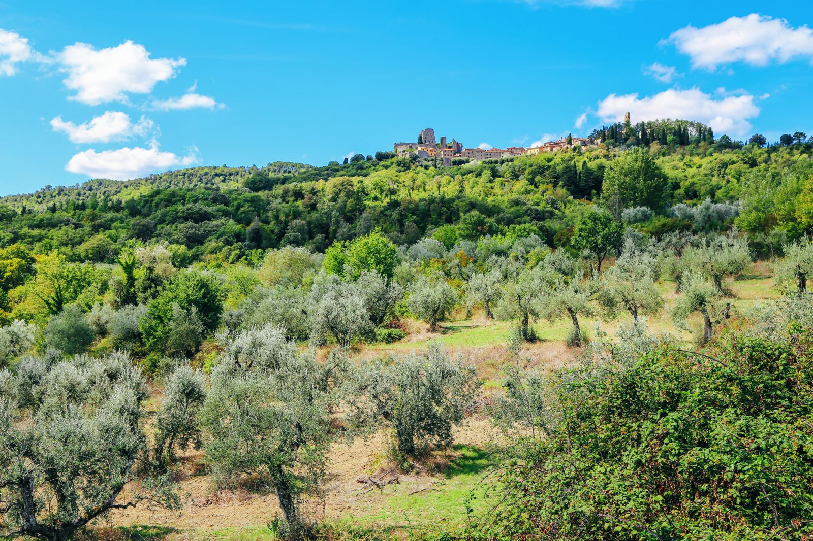Have You Ever Heard Of Civitella in Val di Chiana? (28)