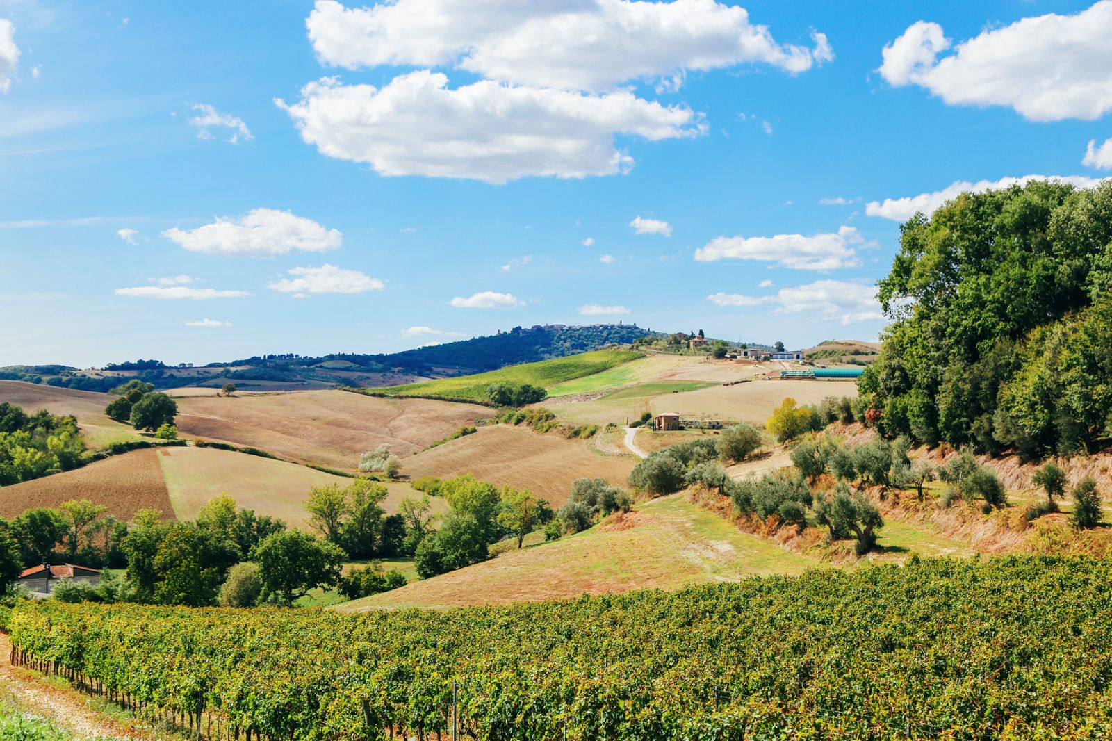 The Tuscan Countryside (5)