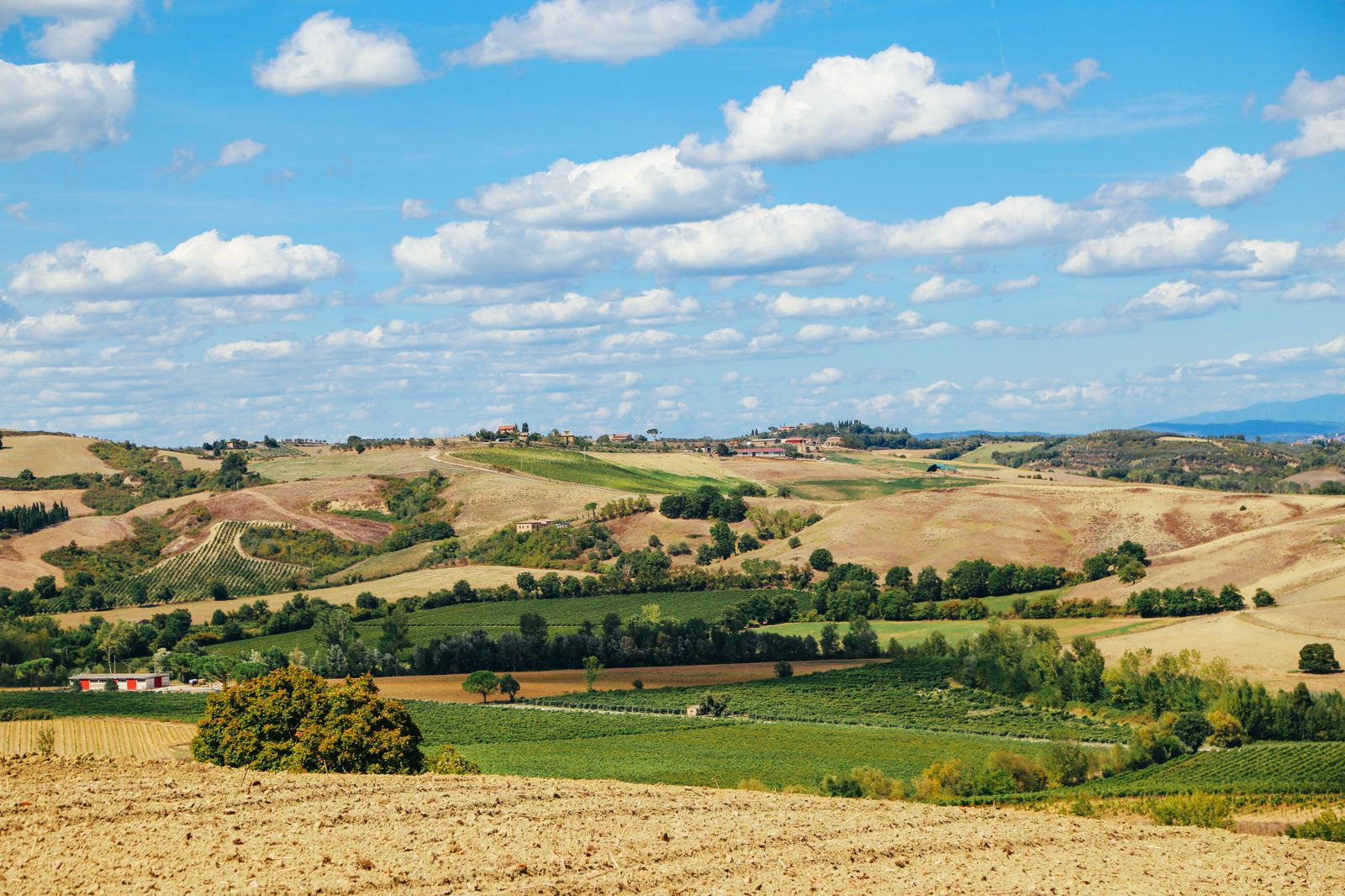 The Tuscan Countryside (10)