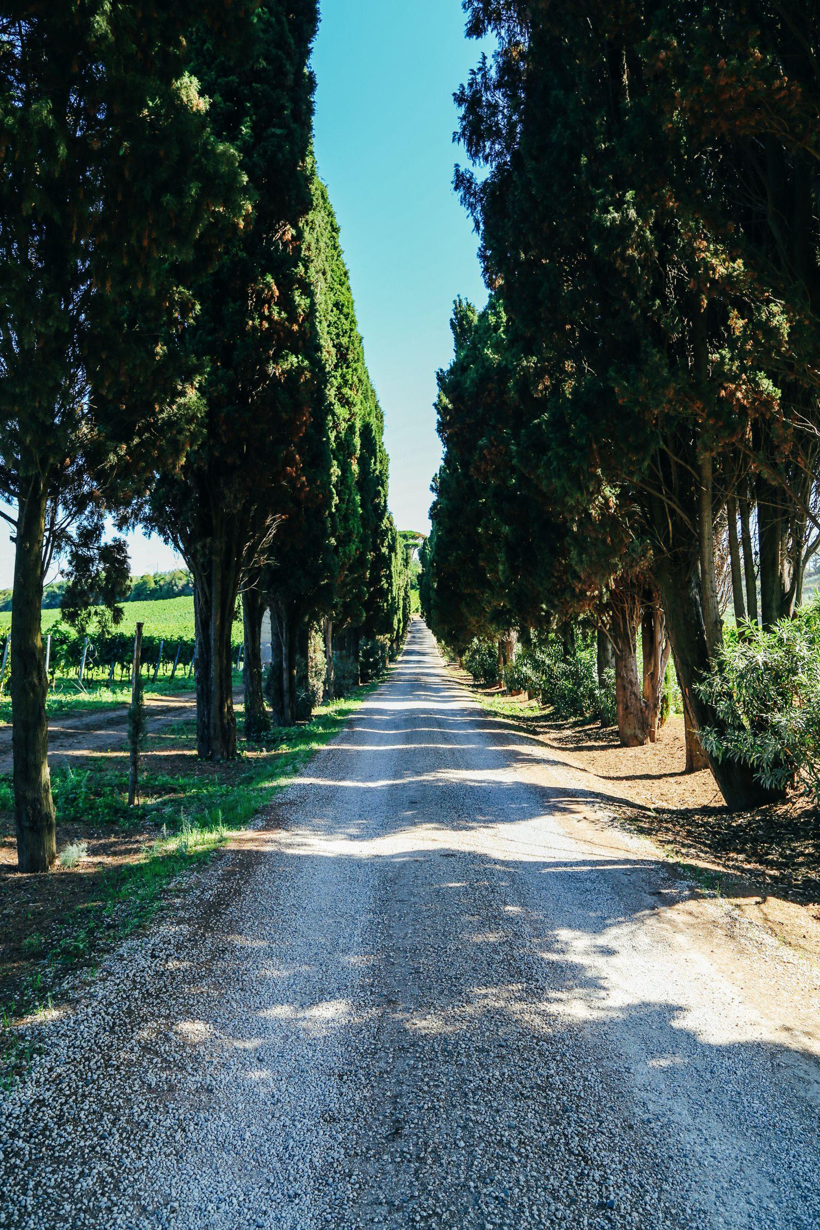 The Farmhouse In Rome (12)