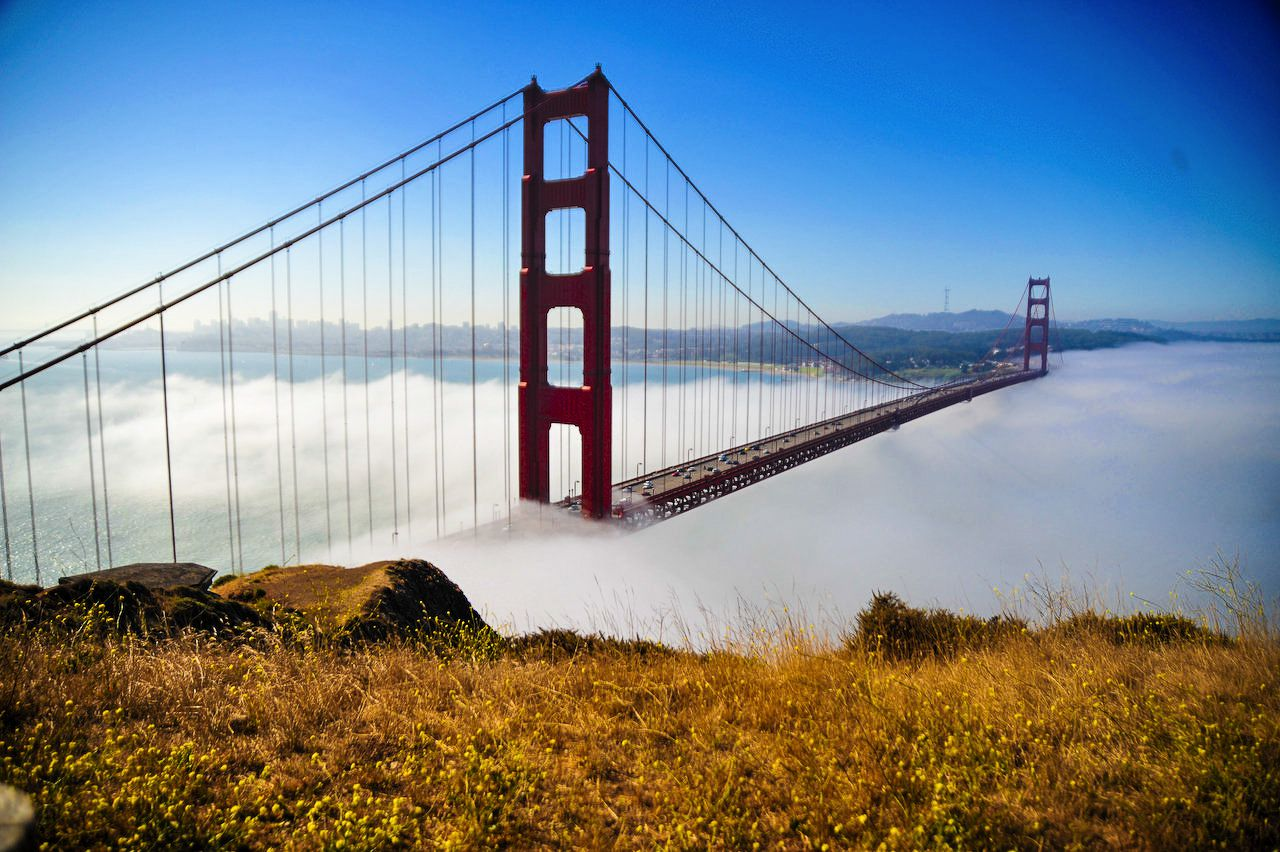 15 Fun Experiences You Must Have In San Francisco (8)
