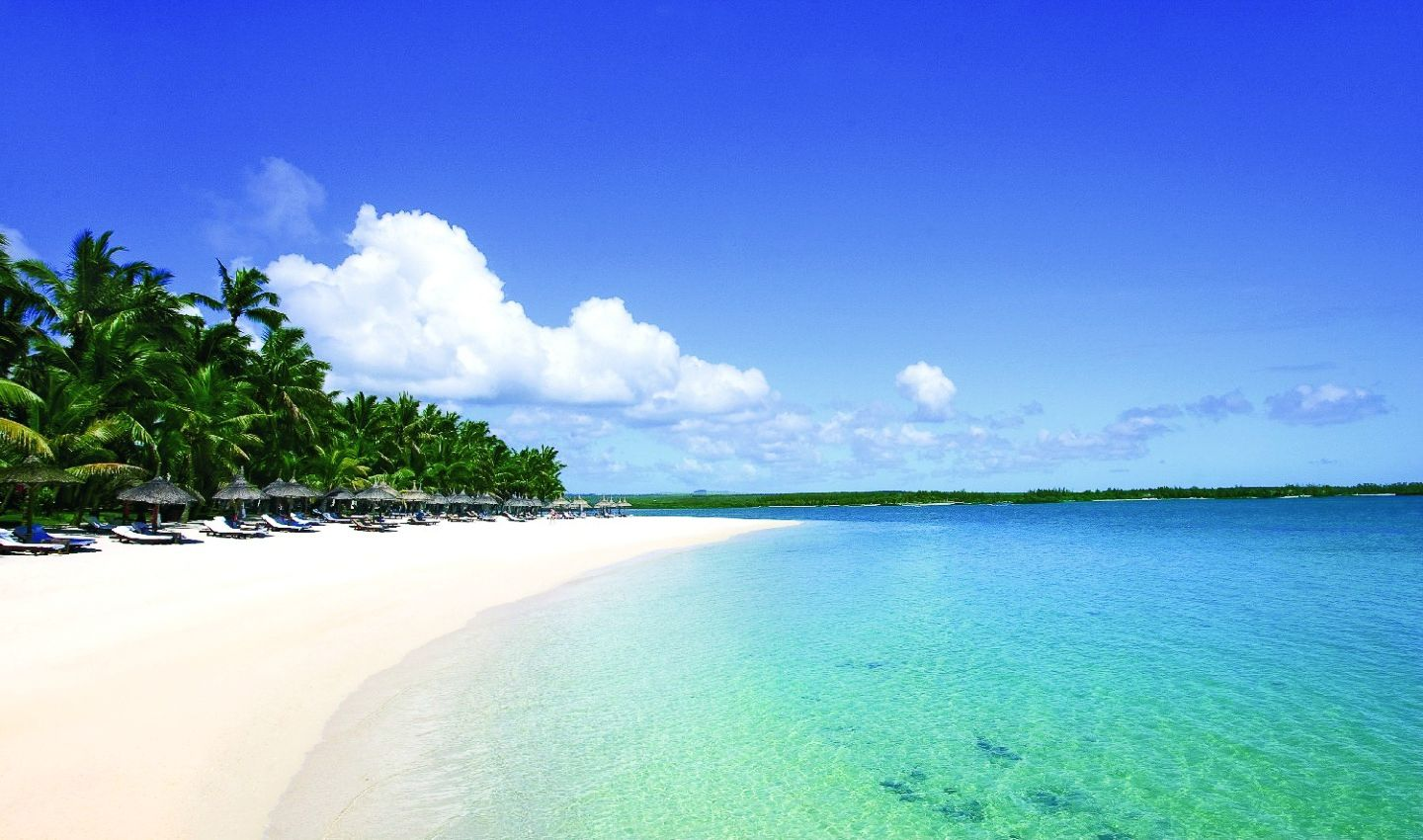 11 Dreamy Beaches You Will Want To Explore In Mauritius (8)